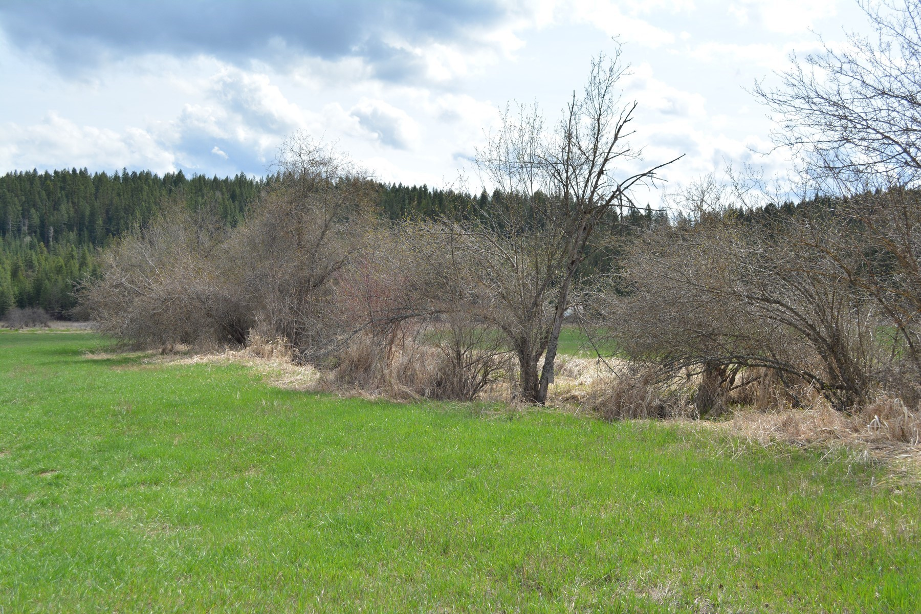 Land for Active at Kelso Lake Acreage 2 Kelso Lake Rd Athol, Idaho 83801 United States
