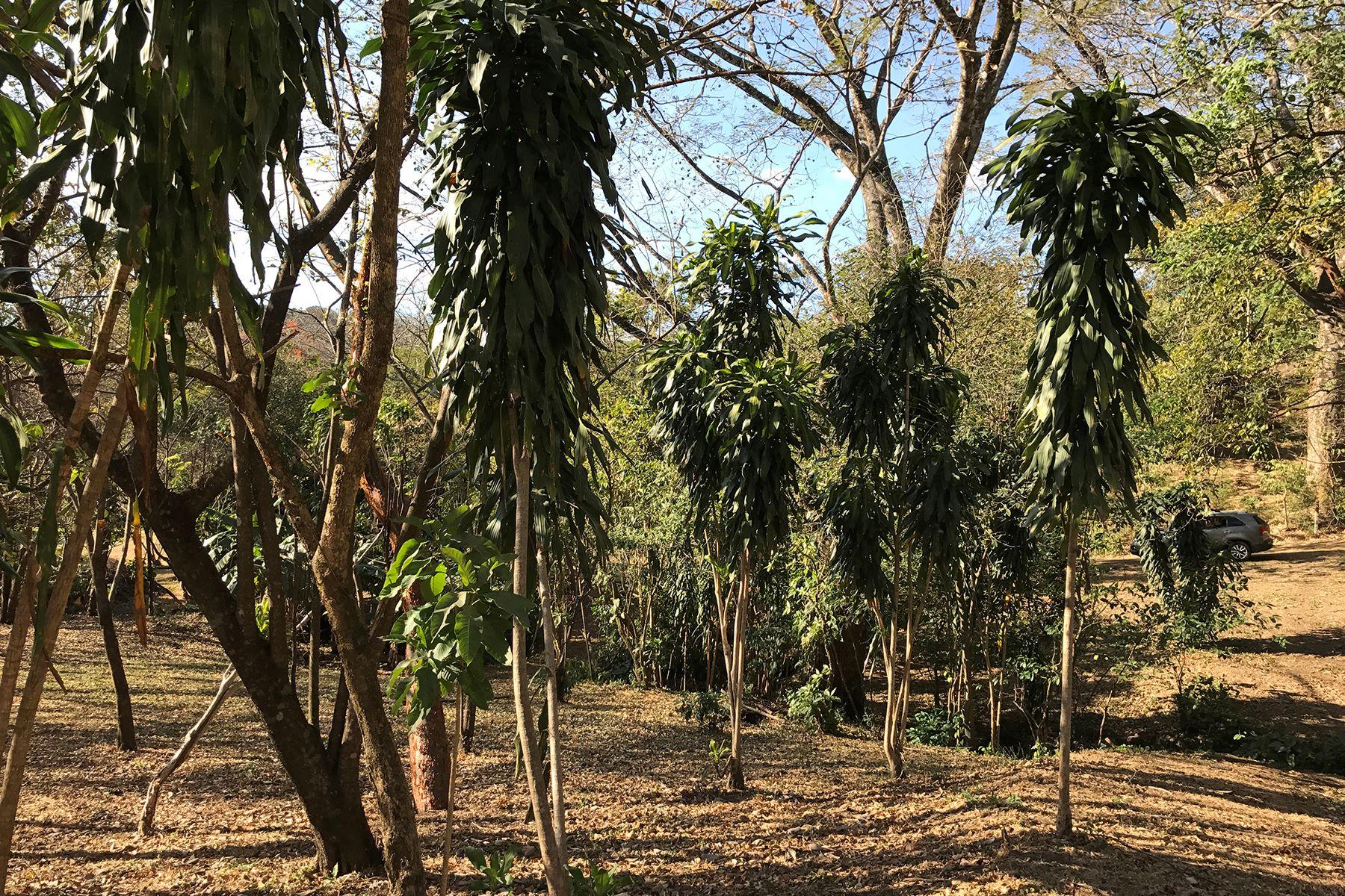 Additional photo for property listing at Lote Brasil de Mora Santa Ana, San Jose Costa Rica
