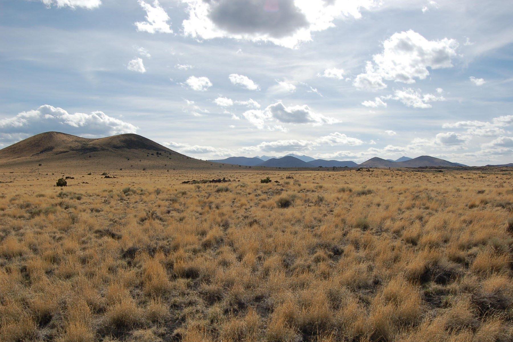 Land for Sale at Sun Leupp Ranches 303-24-004 S Alpine Ranches -- 8 Flagstaff, Arizona 86004 United States