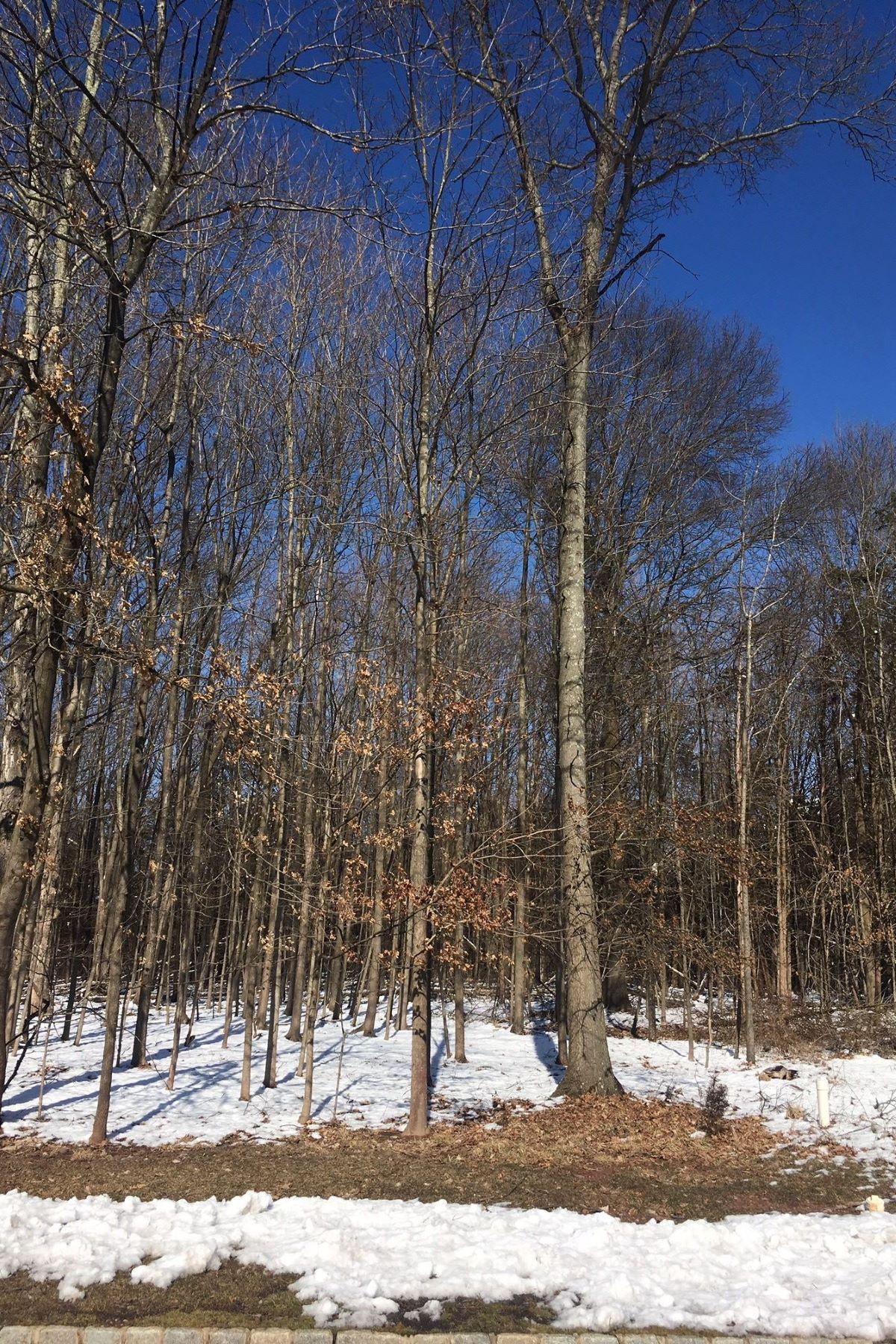 Terrain pour l Vente à Far Hills, New Jersey 07931 États-Unis