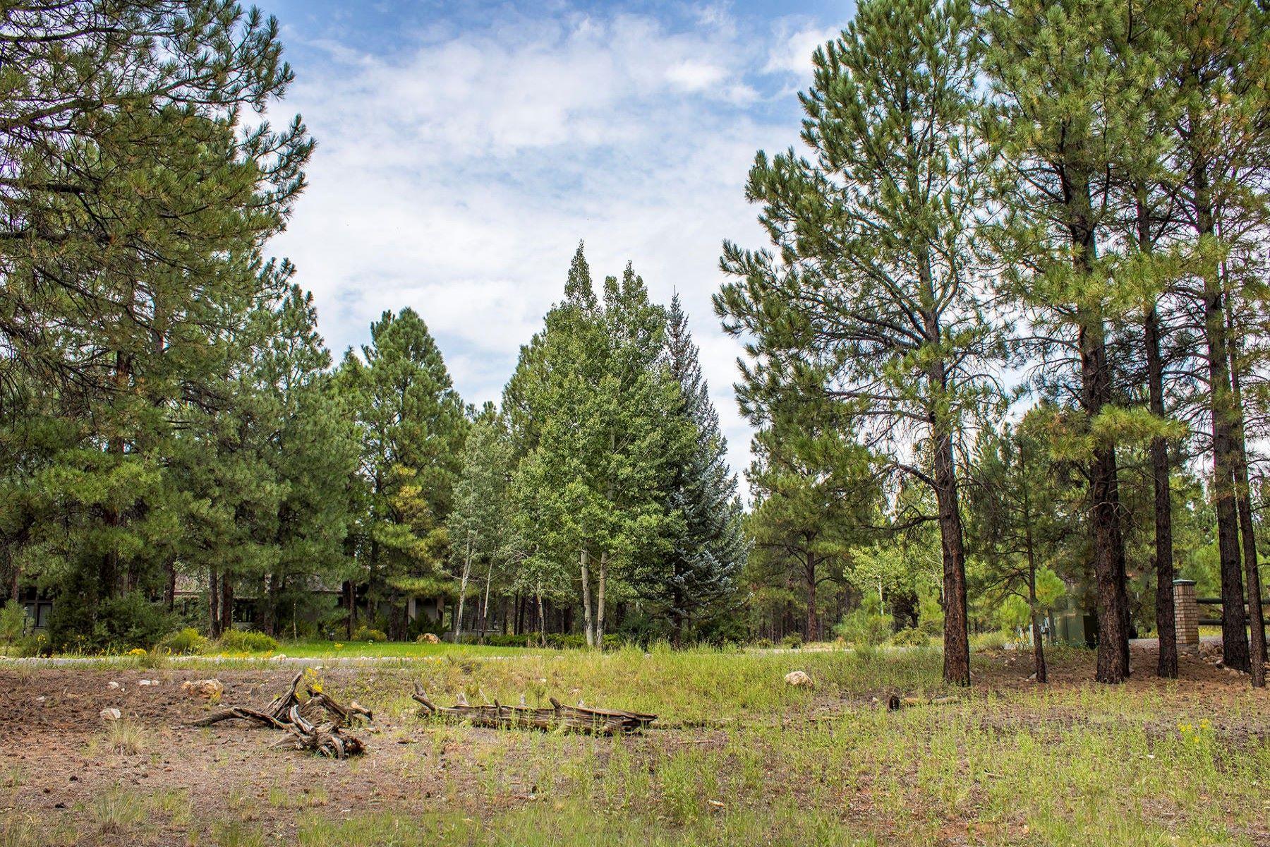 Земля для того Продажа на Build Your Home on This Lakeside Lot 5025 E Lake Country RD, Flagstaff, Аризона, 86004 Соединенные Штаты