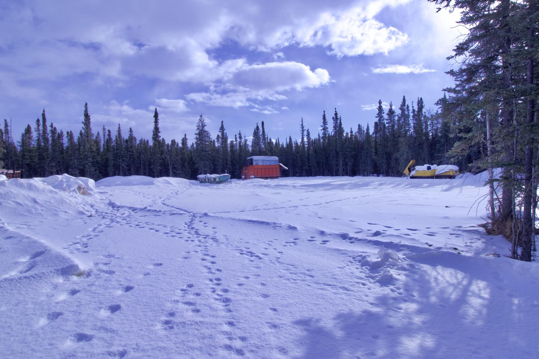 Terreno por un Venta en TSS Ptarmigan Drive Delta Junction, Alaska 99737 Estados Unidos