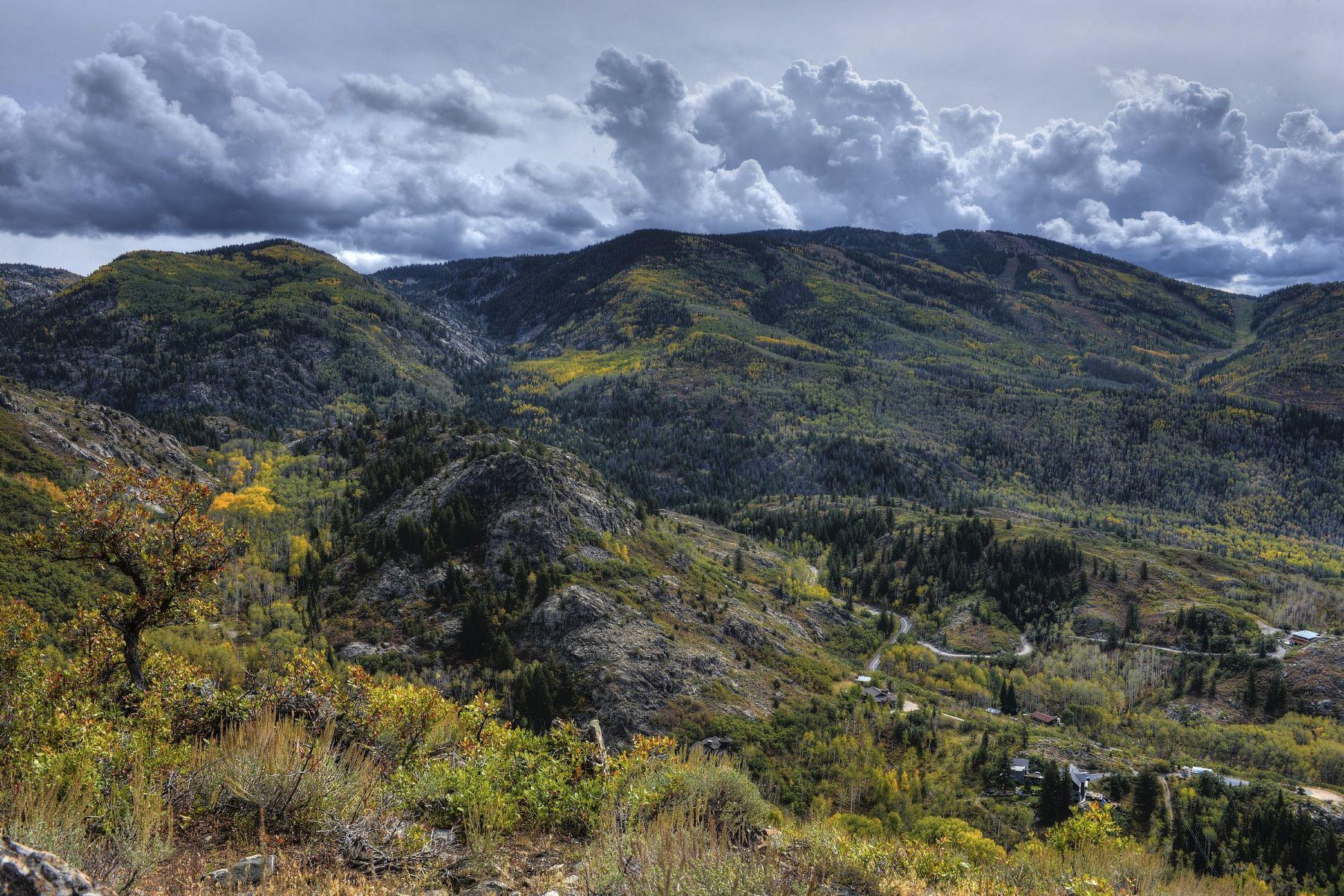 Additional photo for property listing at Mountain Top 550 Huckelberry Lane 斯廷博特斯普林斯, 科罗拉多州 80487 美国