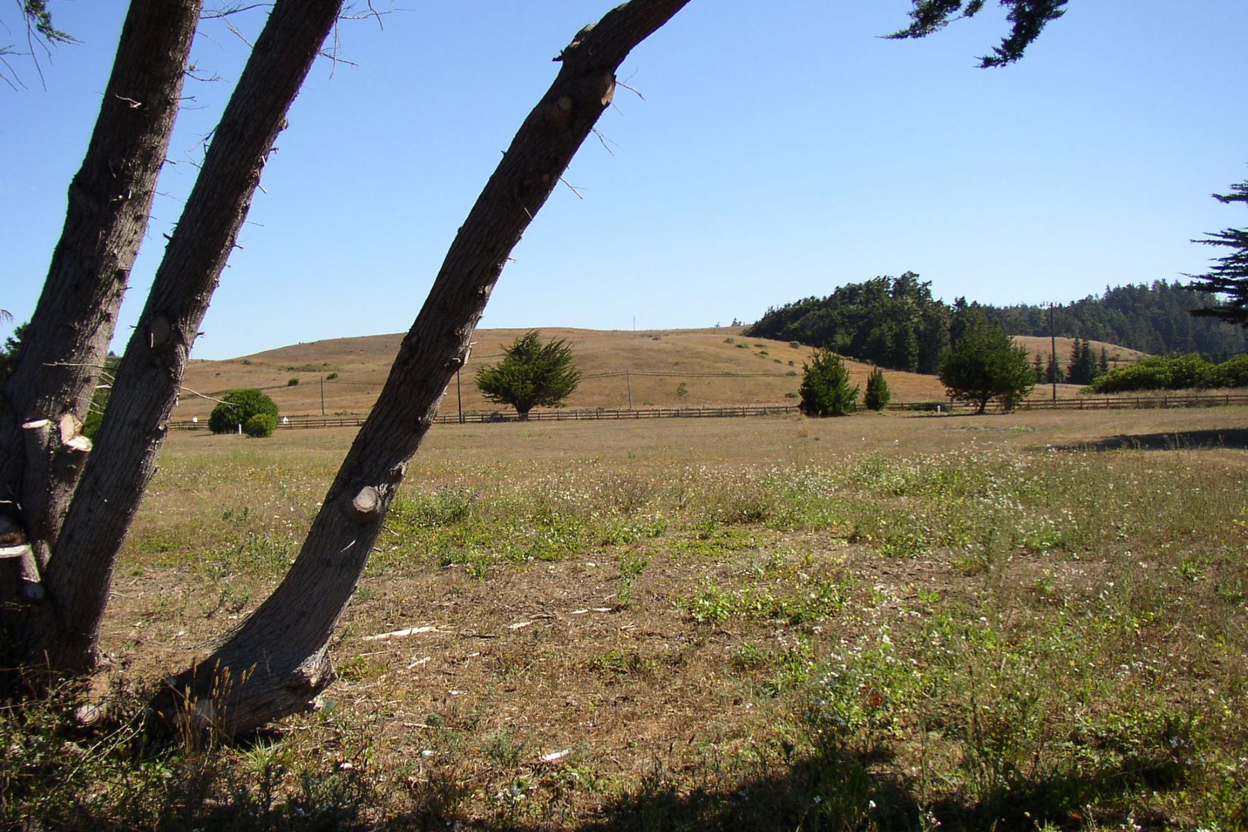 Additional photo for property listing at Ocean View Land with Permits 2900 Spring Grove Road Albion, California 95410 United States