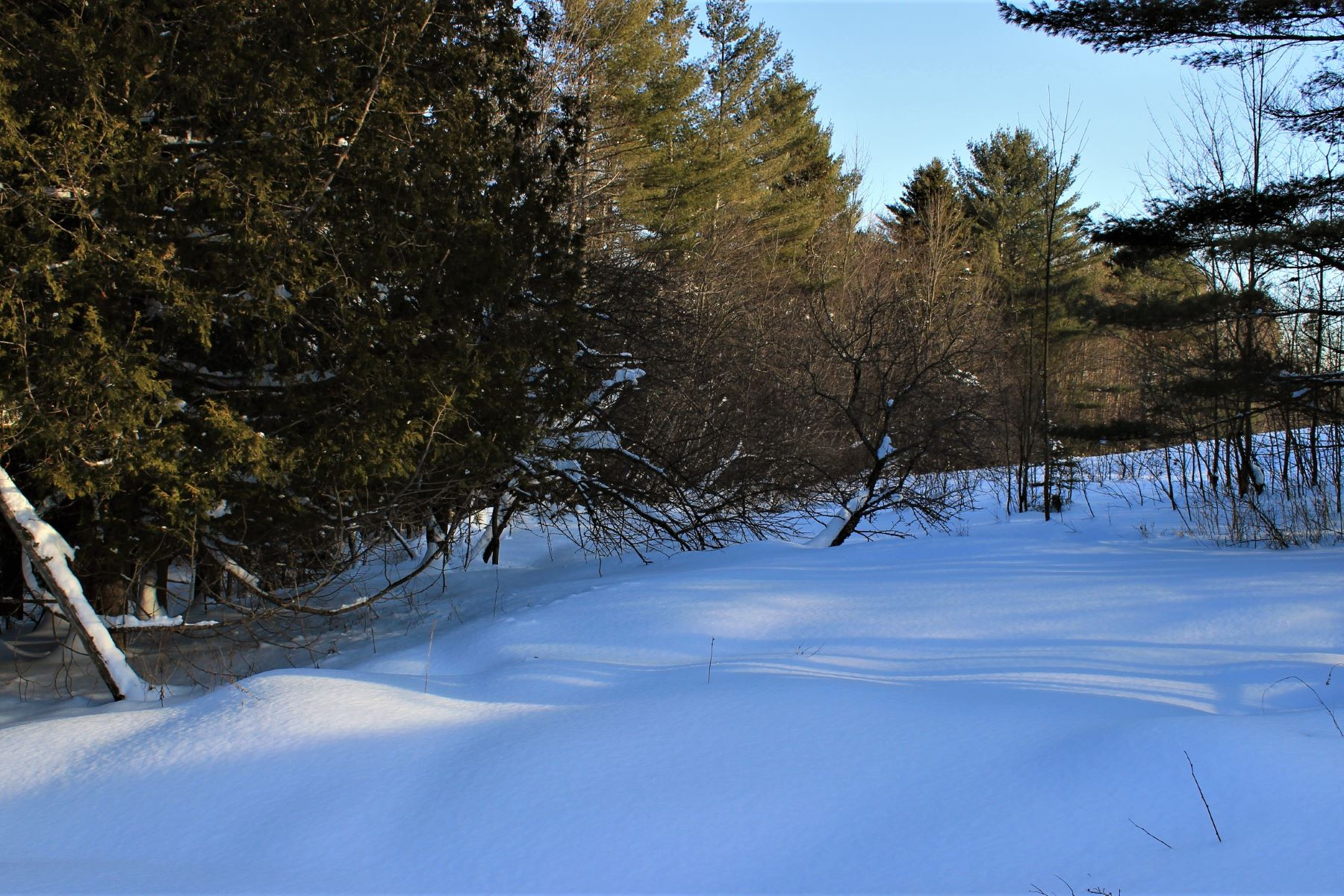 Land for Sale at 3404 Mcdowell, Danville Danville, Vermont, 05828 United States