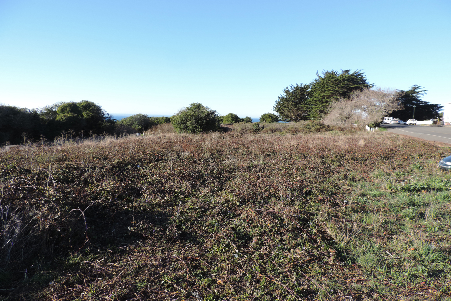 Additional photo for property listing at Parkside Investment 44961 Main Street Mendocino, California 95460 Estados Unidos