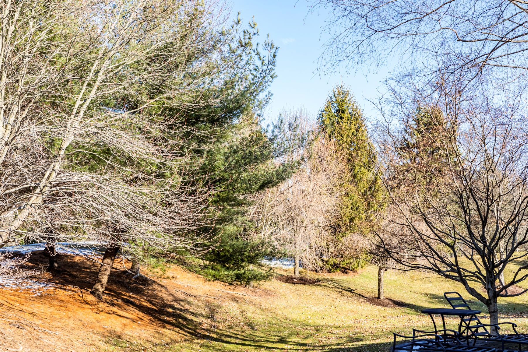 Additional photo for property listing at A Hole In One In Cherry Valley 7 Wild Dunes Court, Skillman, New Jersey 08558 United States