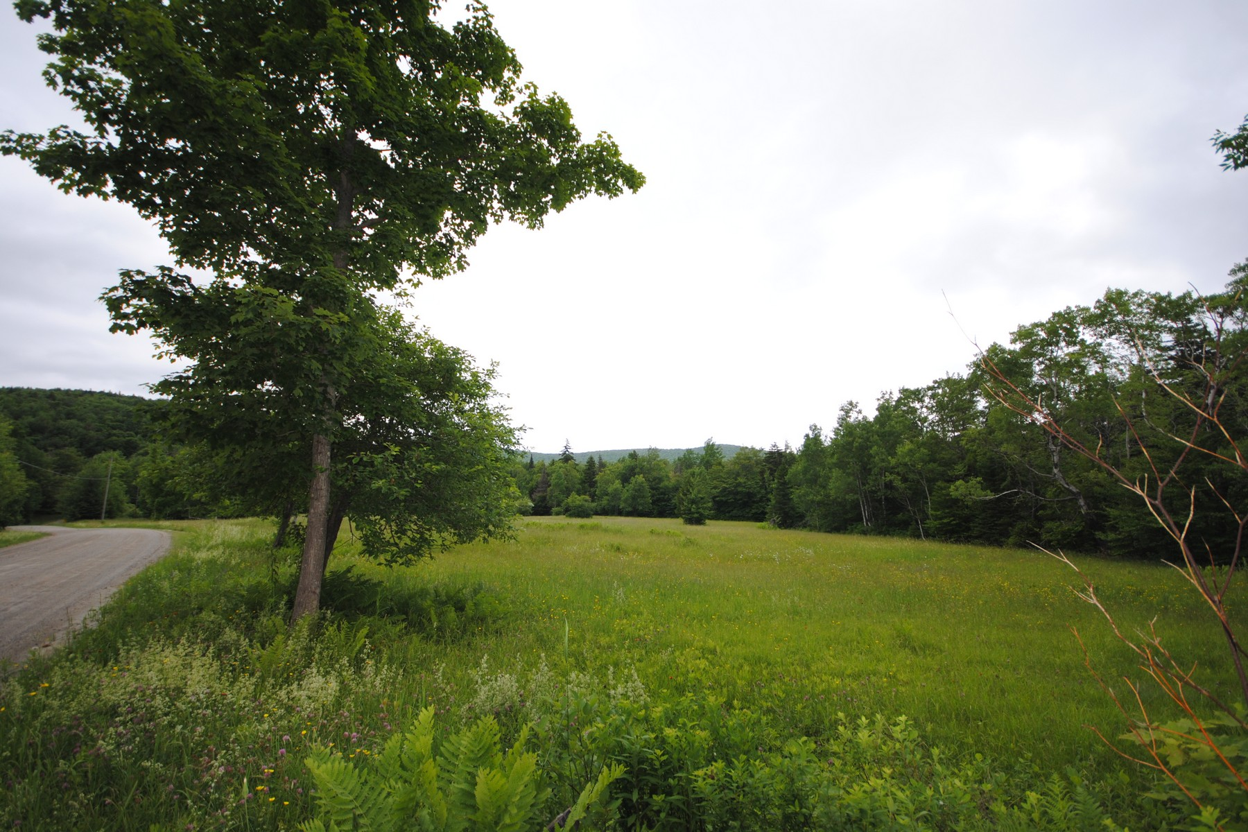 Land for Sale at Lot with Mountain Views and Fields 00 Potter Hill Rd Readsboro, Vermont 05350 United States