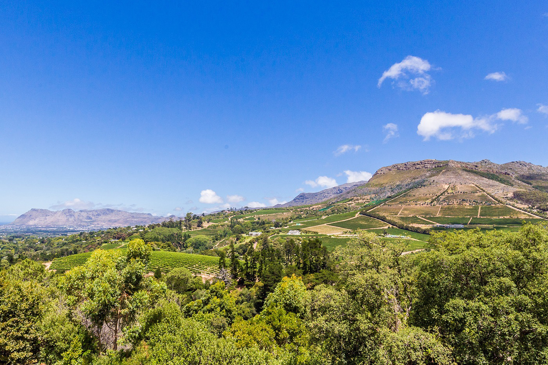 sales property at Constantia