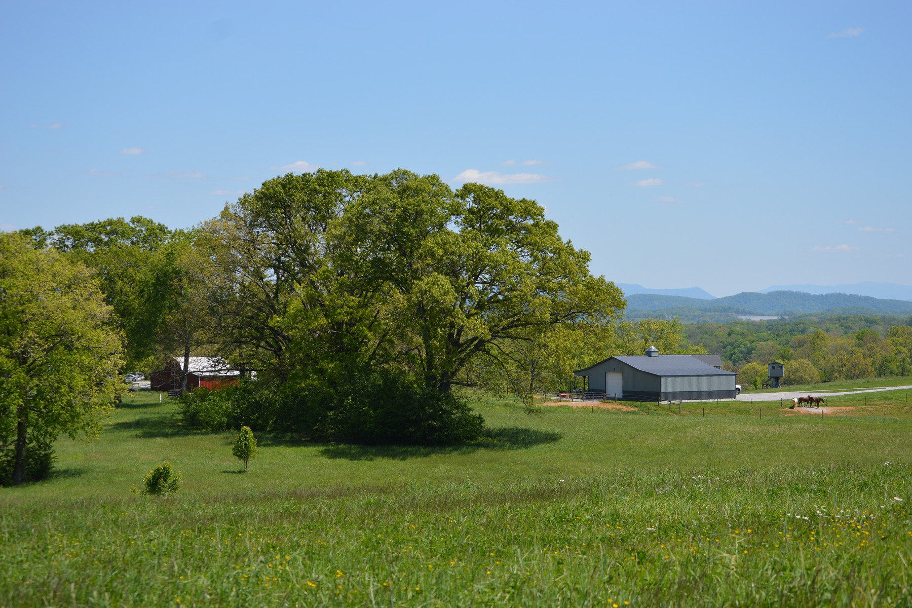 Land for Active at River Ranch on the Holston Ranch Road Lot 27 Blaine, Tennessee 37709 United States