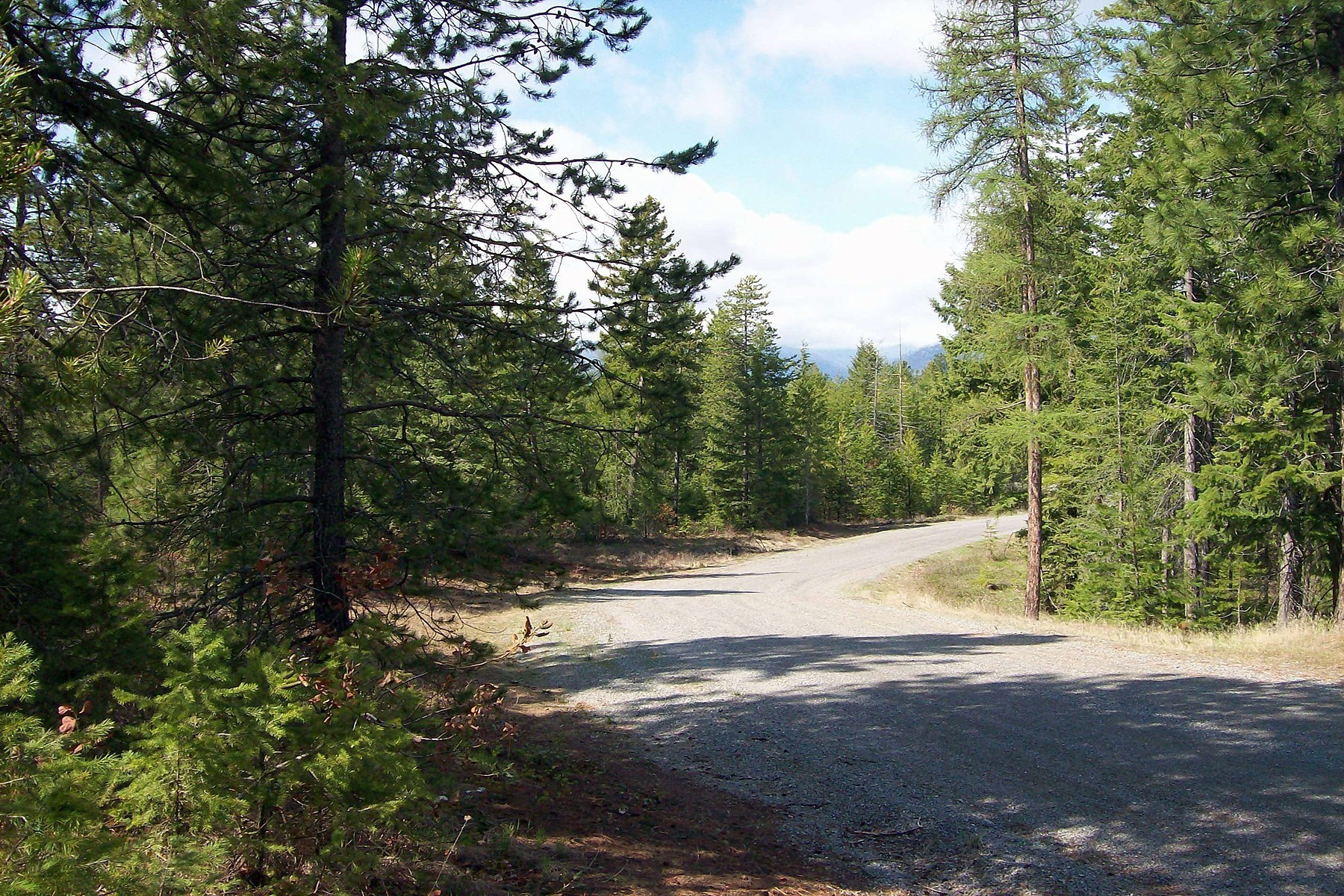 Land for Active at Nicely treed 2.10 acre parcel Lot 8 Heavenly Dr Bonners Ferry, Idaho 83805 United States