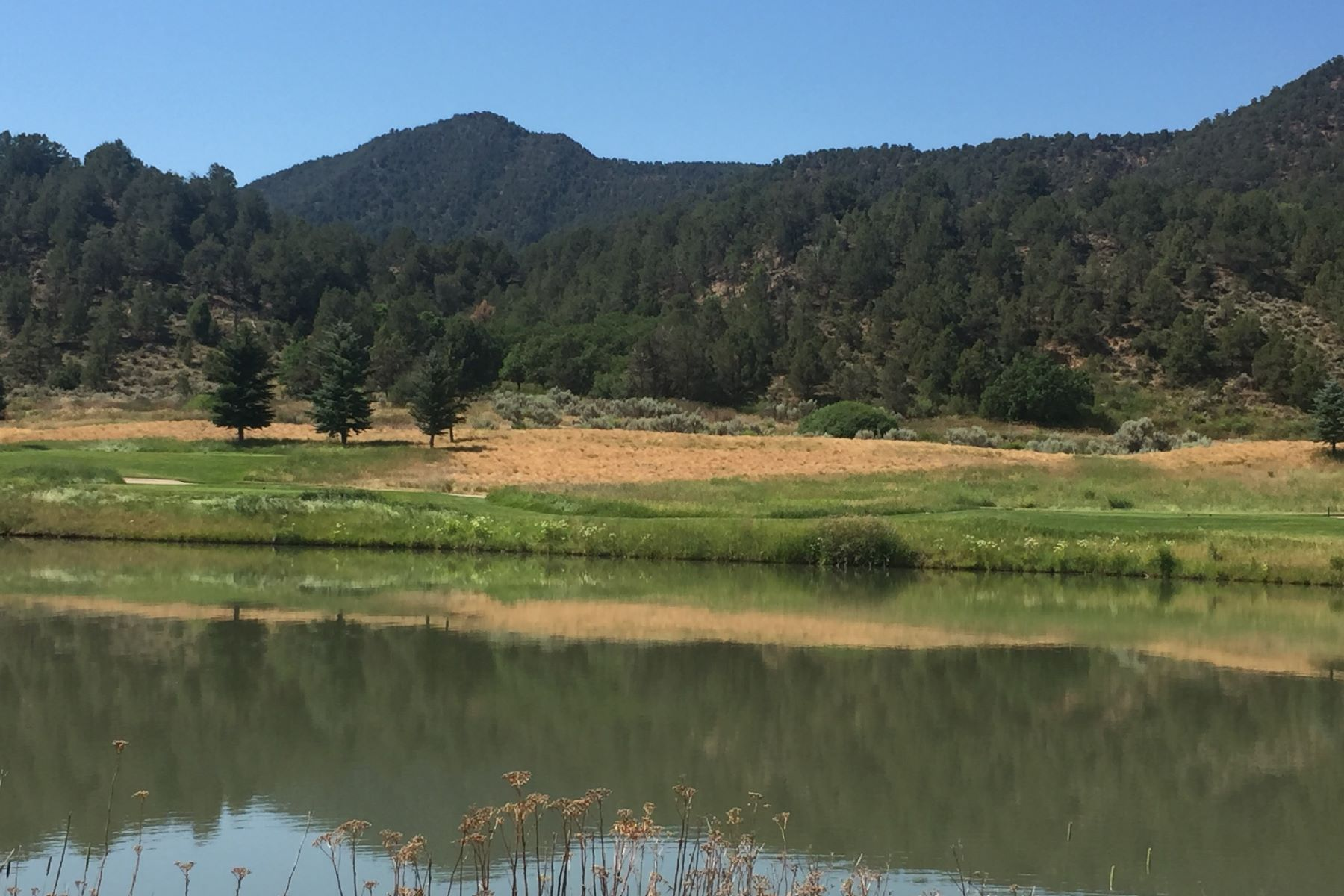 Land for Sale at Borders a tranquil pond 177 Golden Bear Drive Carbondale, Colorado 81623 United States