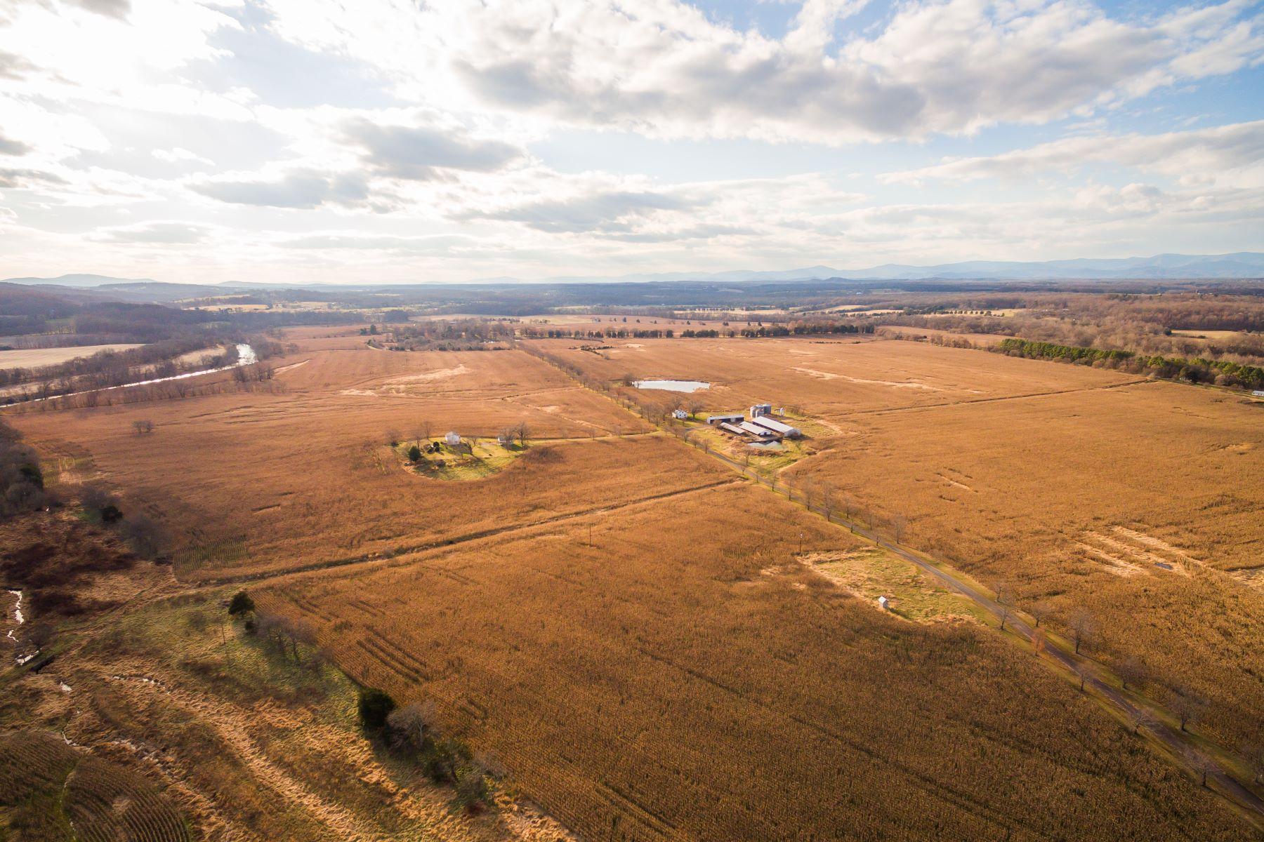 Additional photo for property listing at The Horseshoe 8368 Horseshoe Rd. Rapidan, Virginia 22733 United States