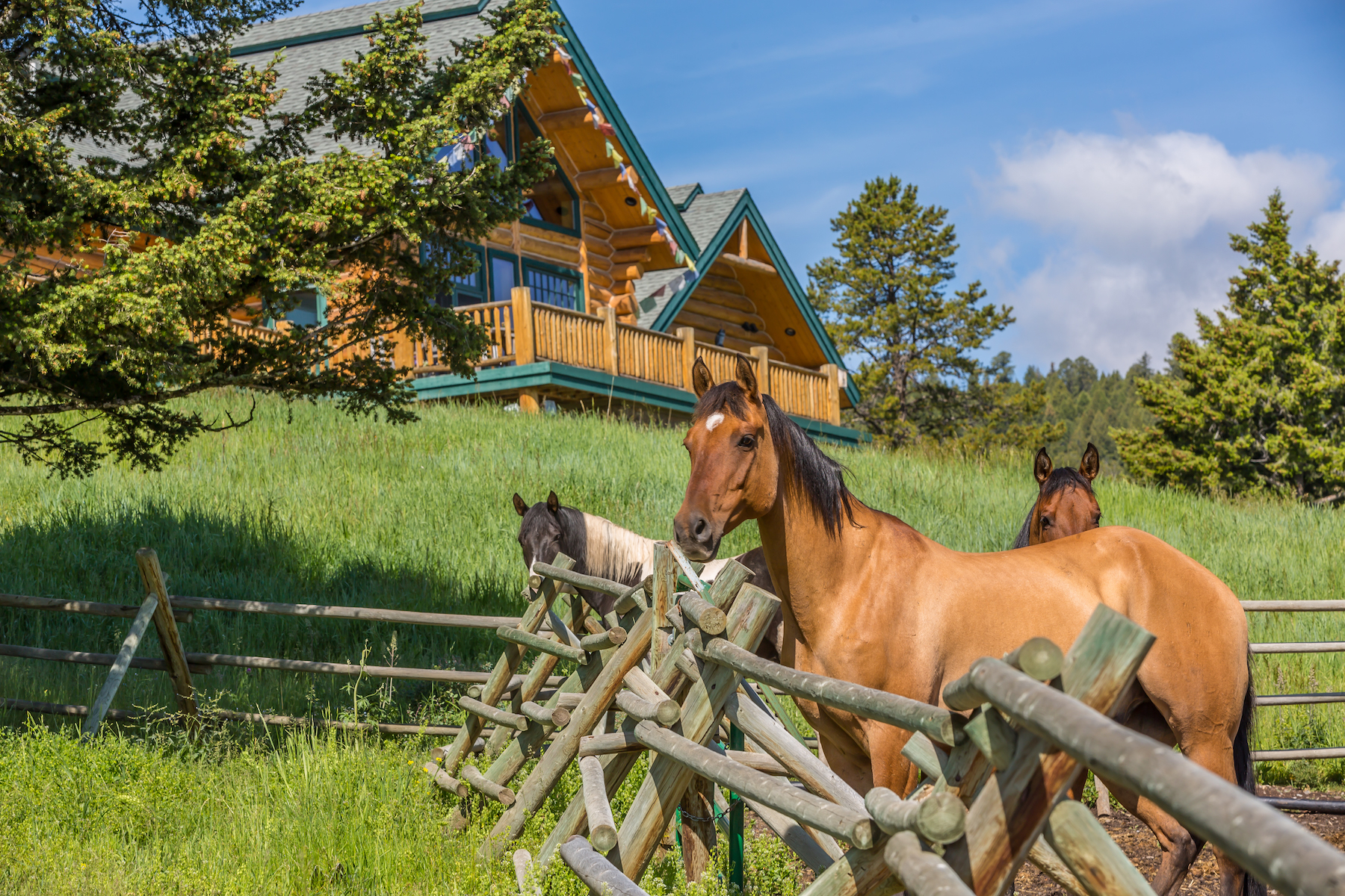 Nhà ở một gia đình vì Bán tại 800 Appaloosa Trail Big Sky, Montana, 59716 Hoa Kỳ