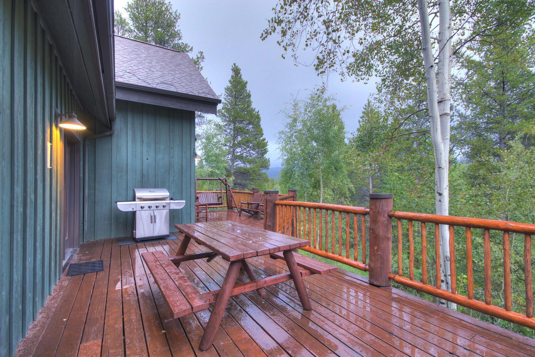 Additional photo for property listing at Nordic Ski Mountain Home 113 Willow Lane Breckenridge, Colorado 80424 United States