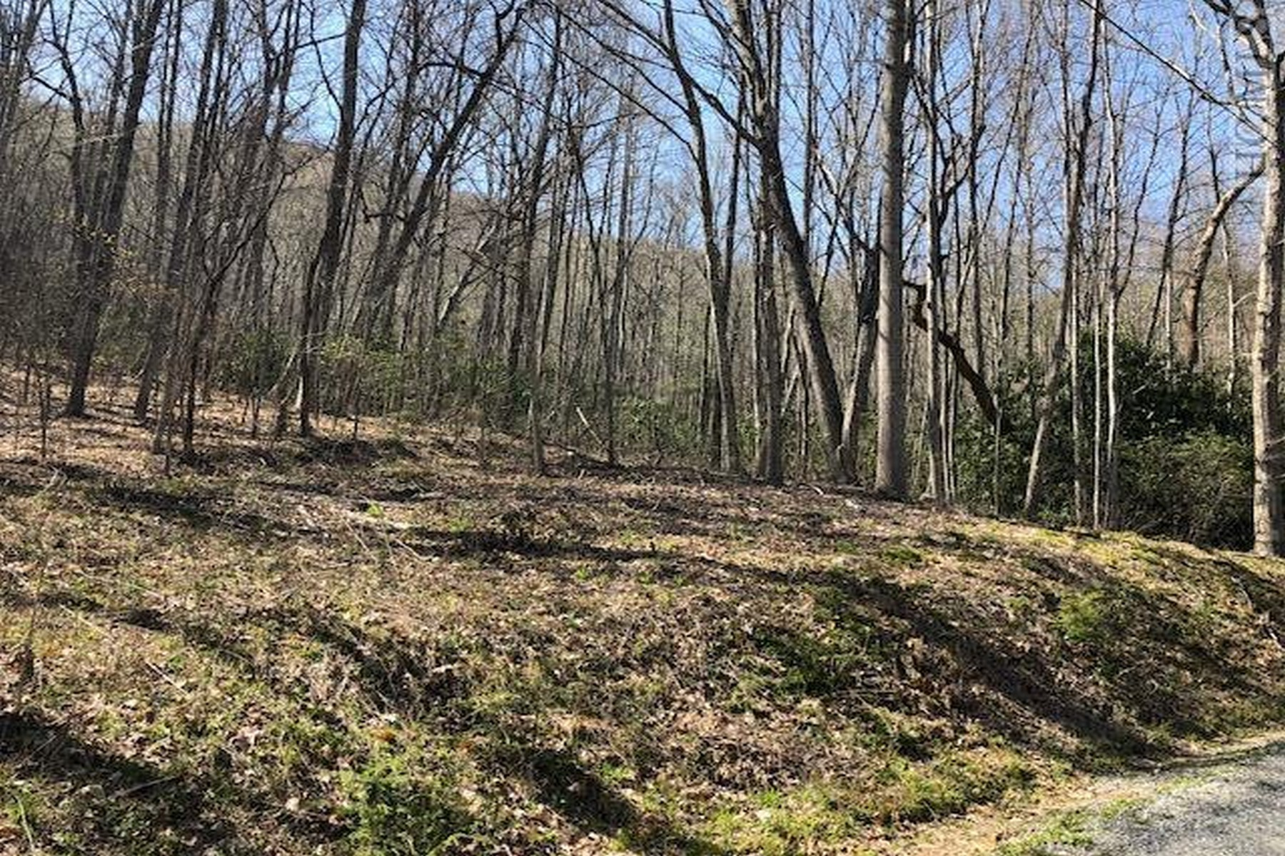Land for Active at Lot 24 Cullowhee Forest Road Lot 24 Cullowee Forest Road Cullowhee, North Carolina 28723 United States