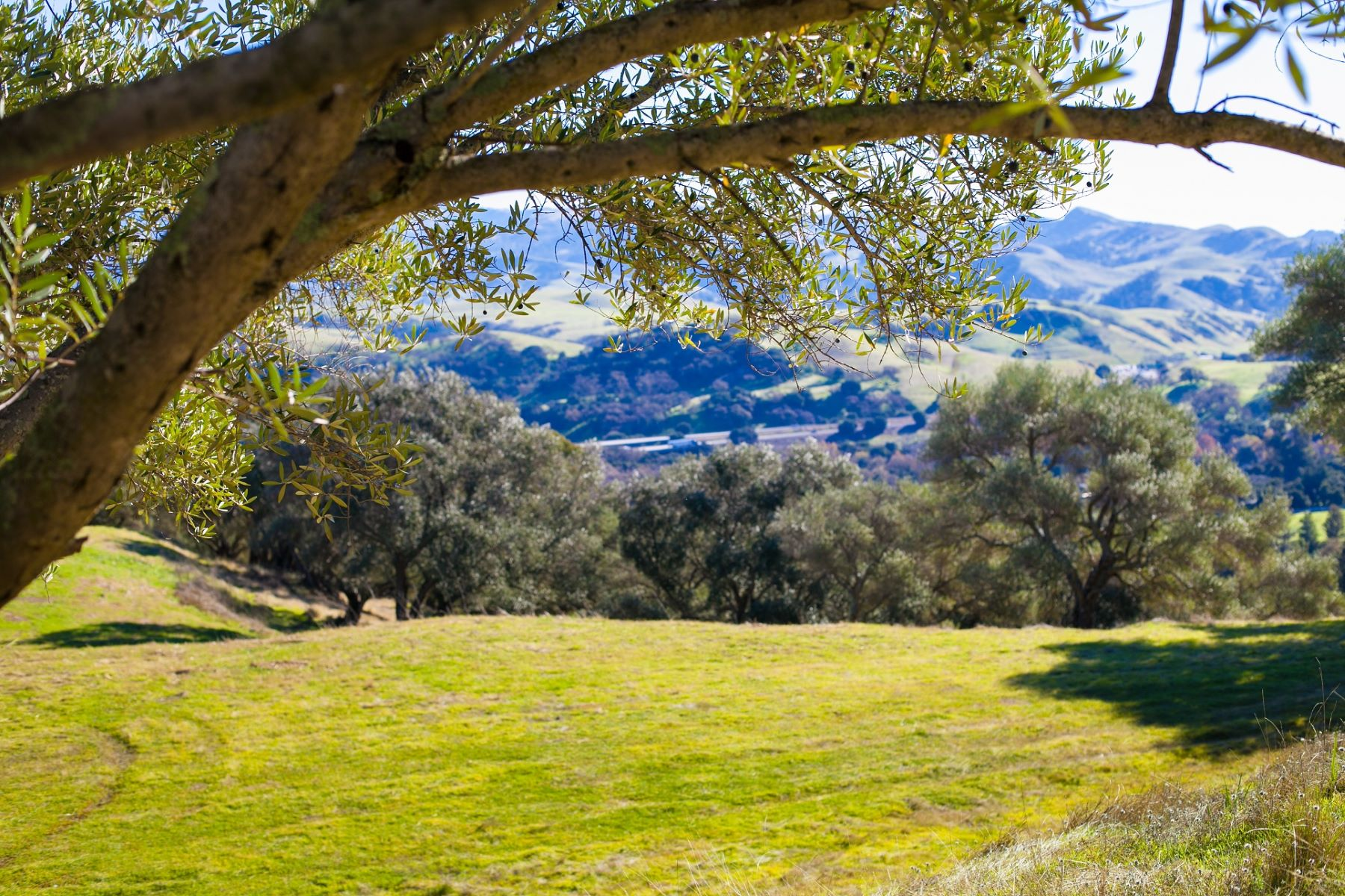 Land for Sale at 10.42 Acre Panoramic View Lot 9925 Foothill Road Sunol, California 94586 United States