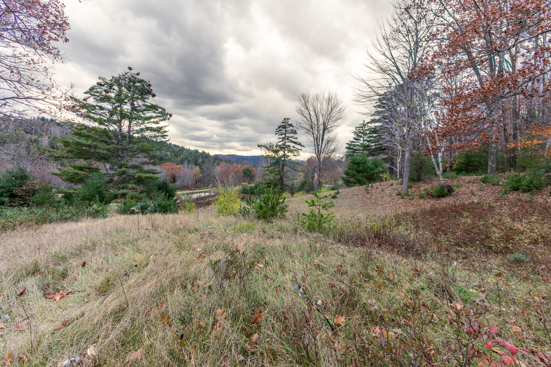 Land for Sale at 119 Whipple Hill Road, Lyme 119 Whipple Hill Rd Lyme, New Hampshire 03768 United States