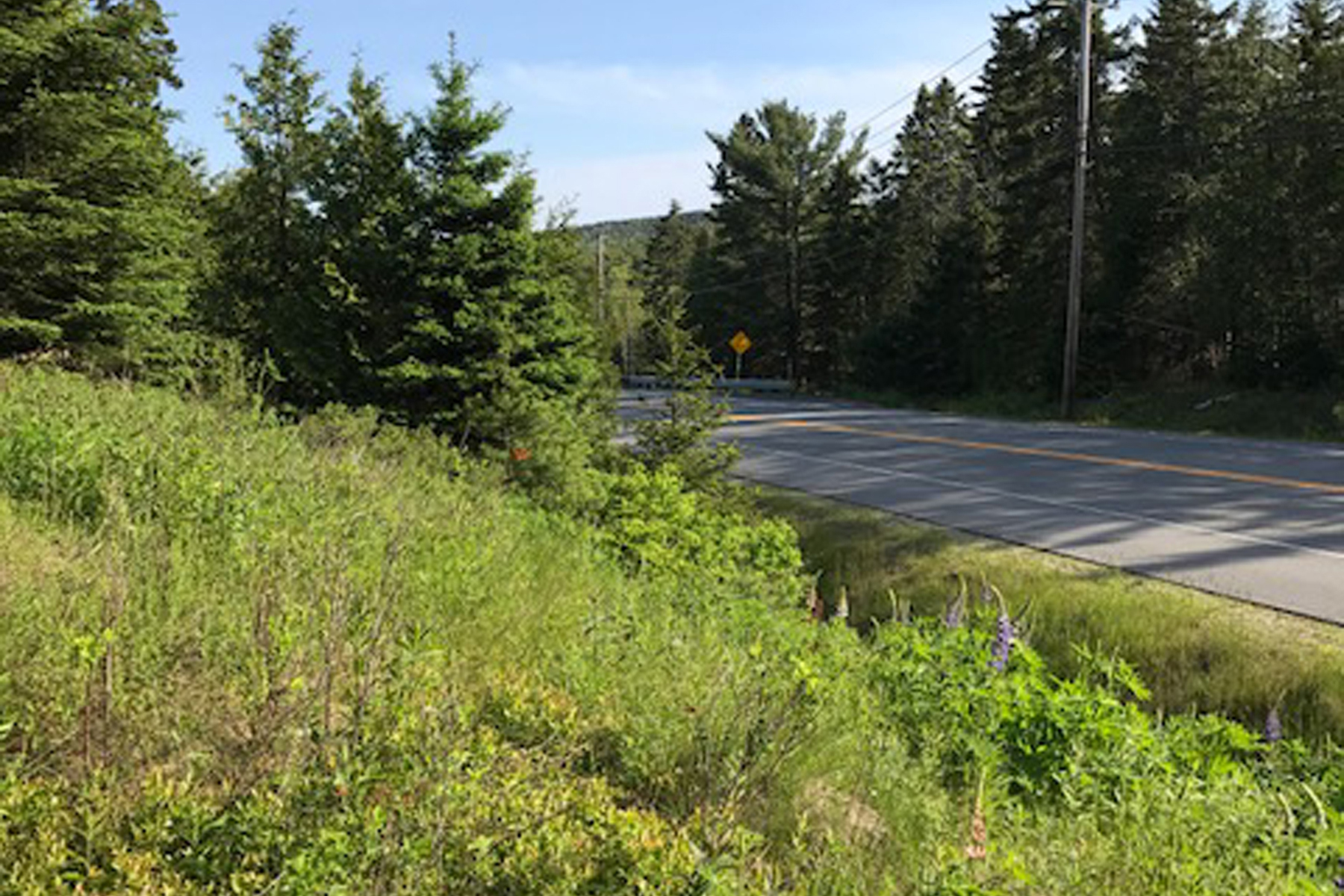 Land for Sale at 55 Main Street Southwest Harbor, Maine, 04679 United States