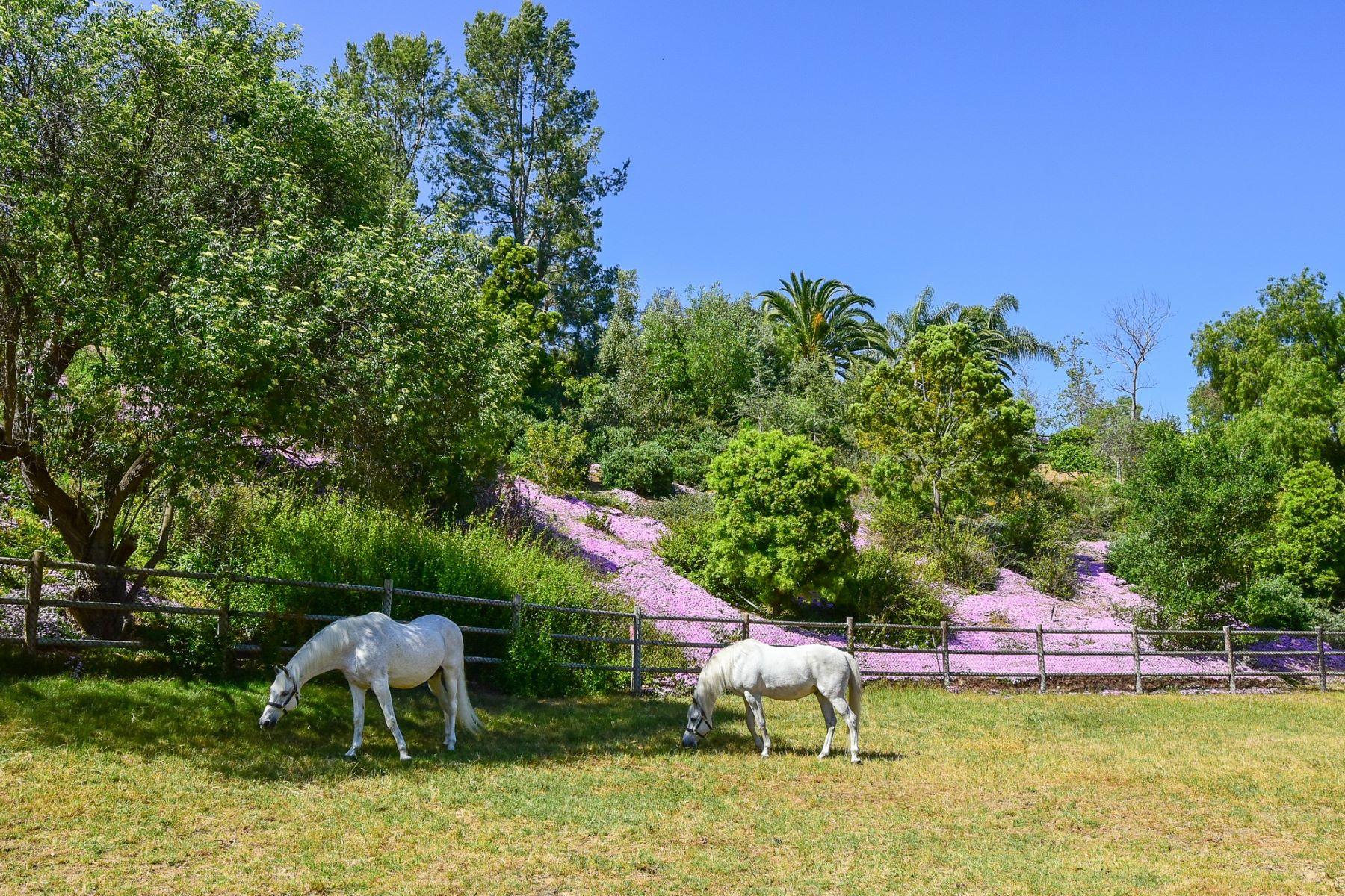 Land for Active at 5330 San Elijo Rancho Santa Fe, California 92067 United States