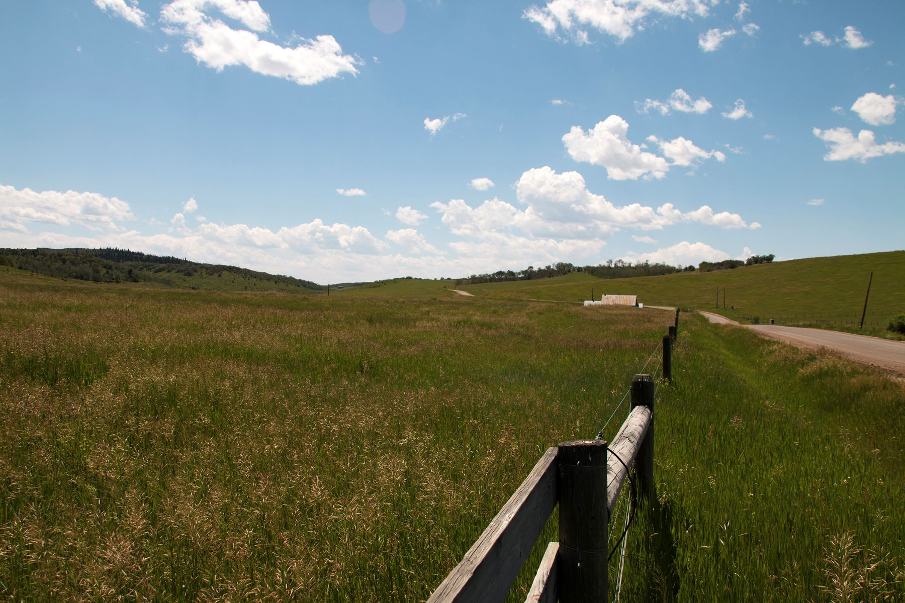 Additional photo for property listing at 139+ Acre Homesite TBD RCR 43 Steamboat Springs, Colorado 80487 Estados Unidos