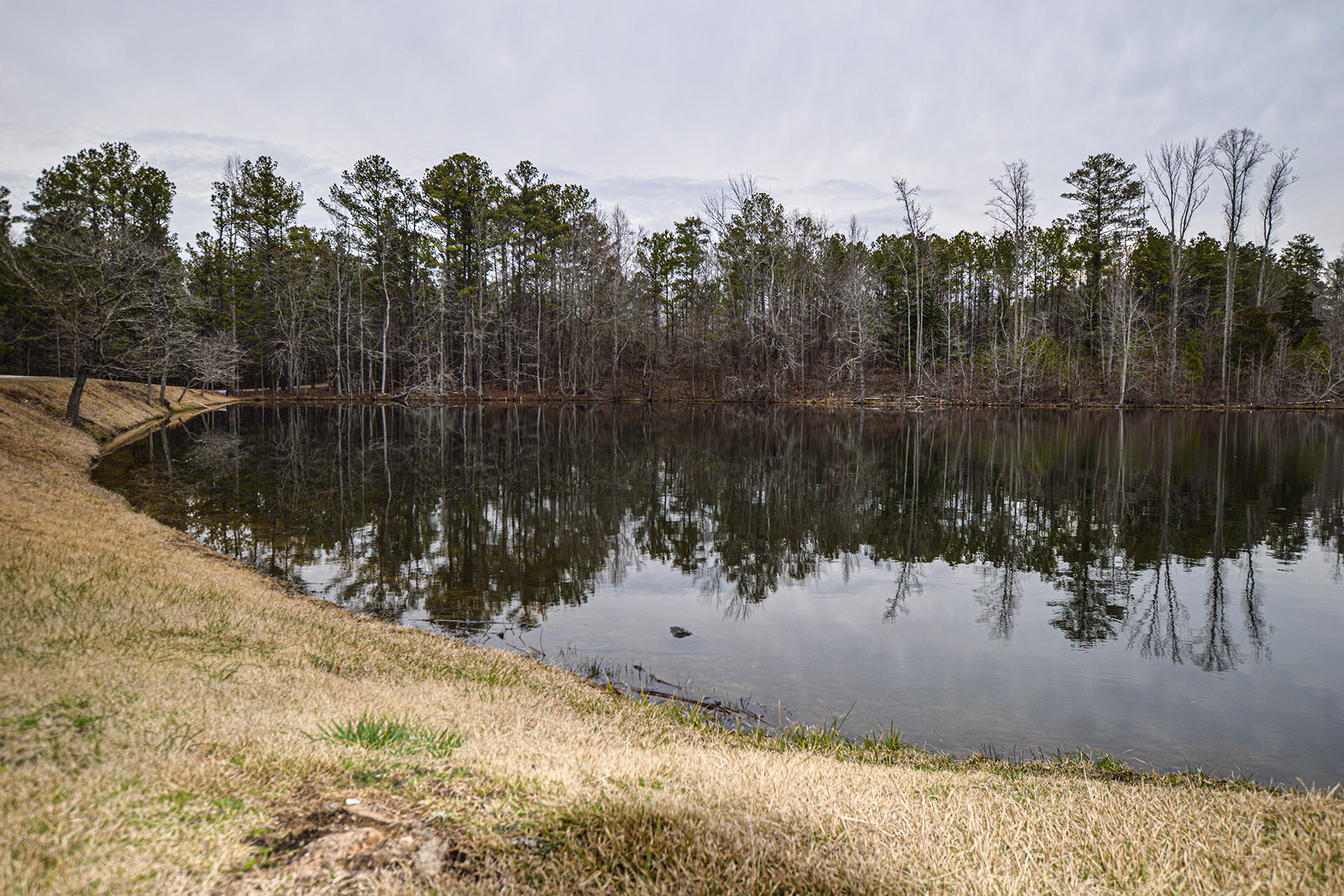 Land for Sale at Lovely Wooded Acreage in Chattahoochee Hill Country 00000 Garretts Ferry Road Chattahoochee Hills, Georgia 30268 United States