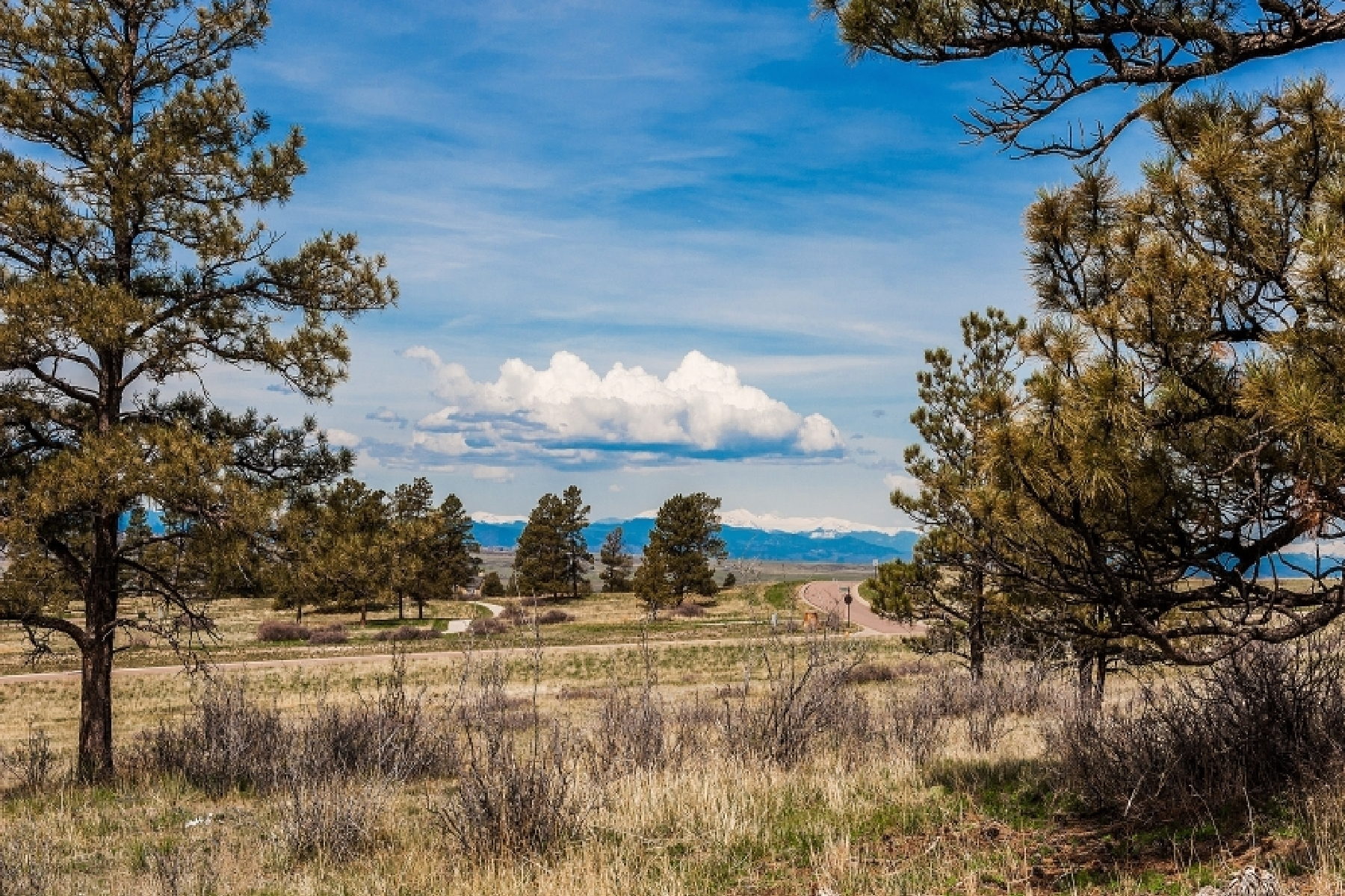 Additional photo for property listing at 8601 Witez Ct 8601 Witez Ct Parker, Colorado 80134 United States