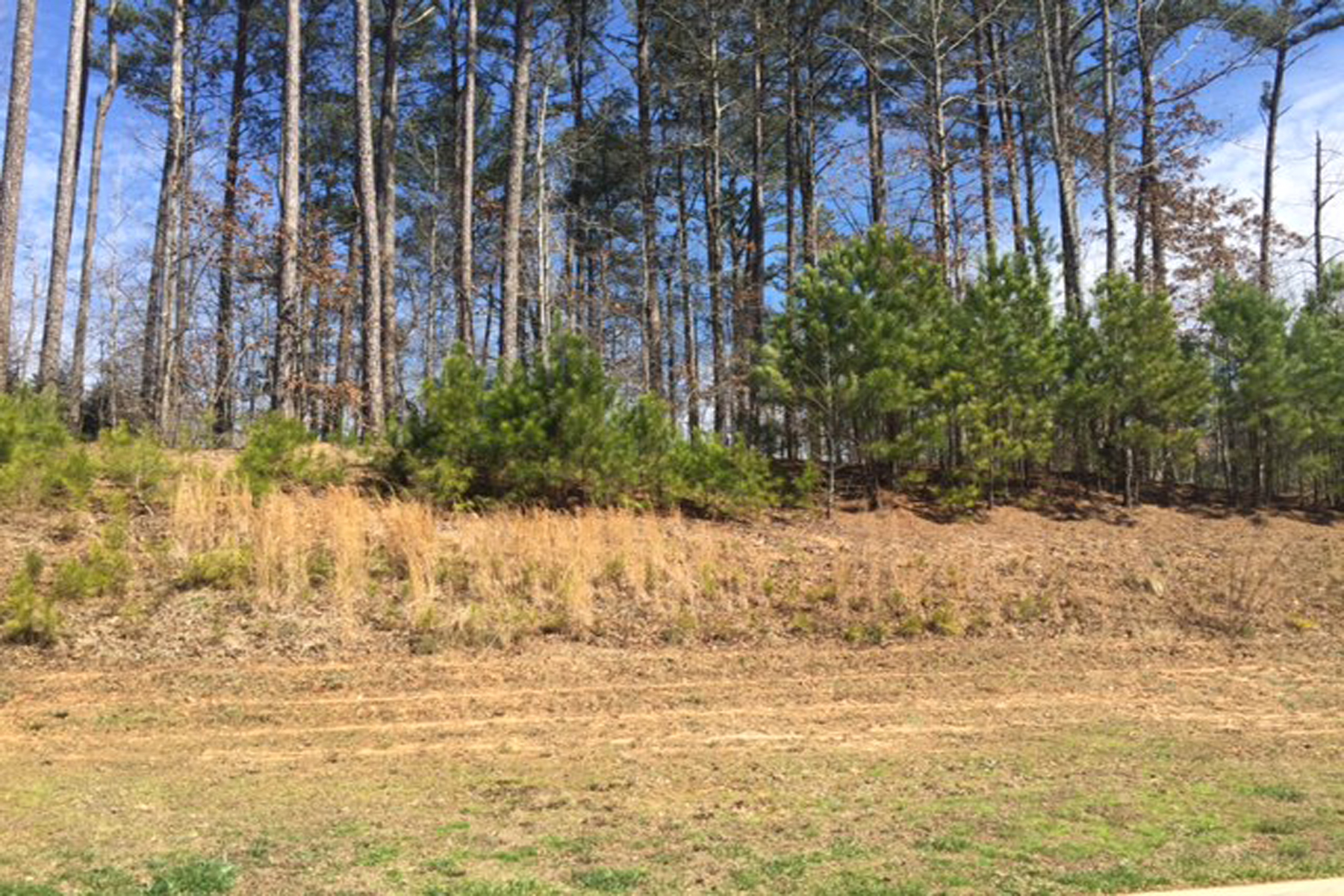 Land for Sale at Gentle Wooded Lot In The River Club Allows Main Level Walk Out Backyard 4835 Kettle River Point Suwanee, Georgia 30024 United States