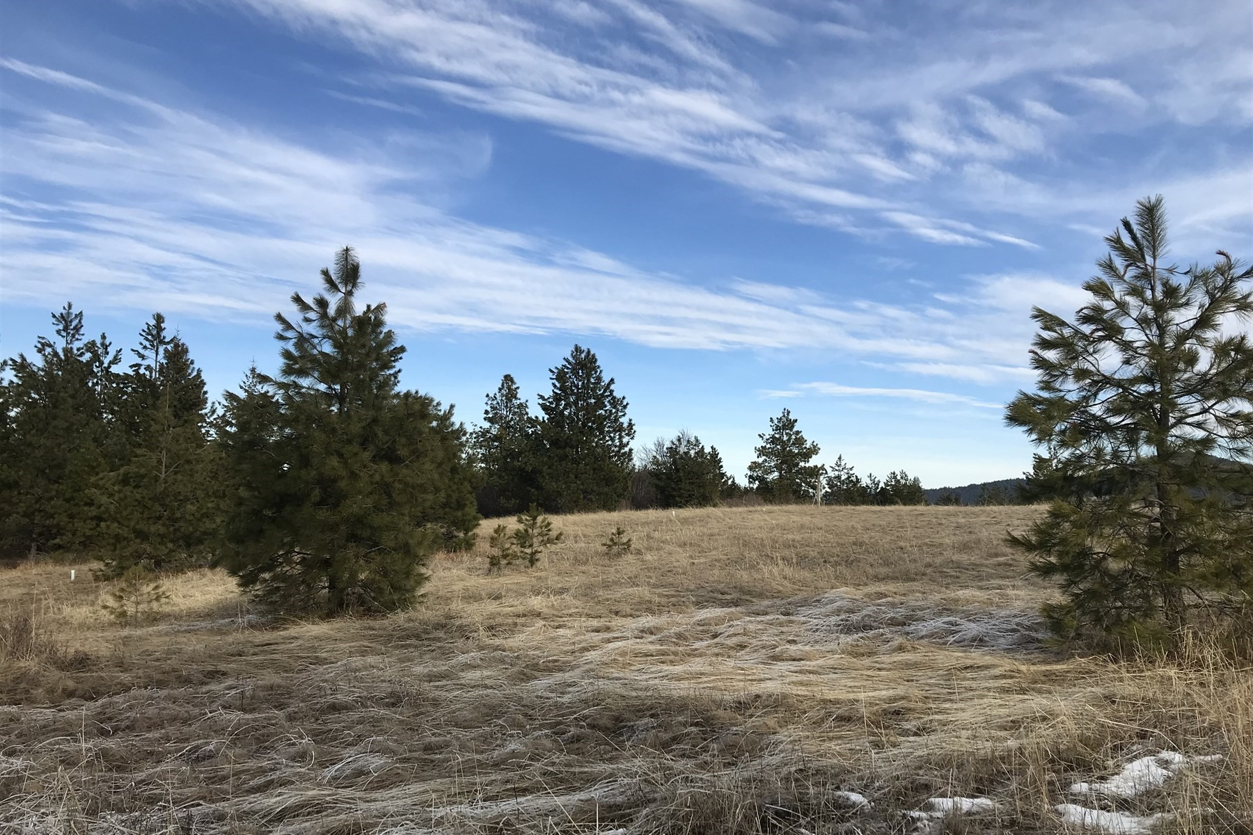 Land for Active at 10 Acres on Dancing Wind Lane 8779 E Dancing Wind Ln St. Maries, Idaho 83861 United States