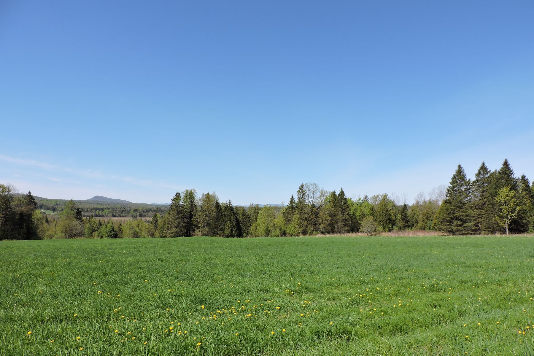 Land for Sale at 4862 Vt Route 105 Route, Charleston 4862 Vt Route 105 Route Charleston, Vermont 05885 United States