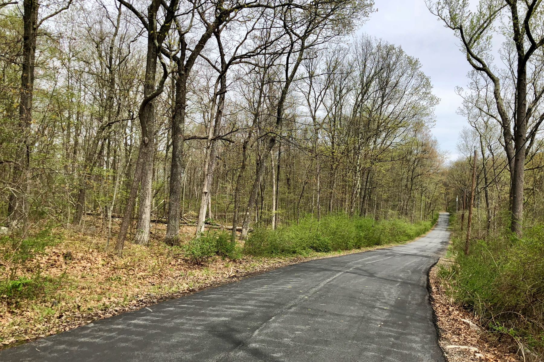 Land for Sale at Tuxedo Park Land Potuckit Road Tuxedo Park, New York 10987 United States