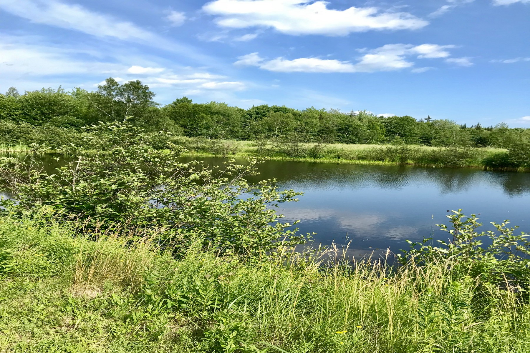 Land for Sale at 0 Bayside Road Trenton, Maine 04605 United States