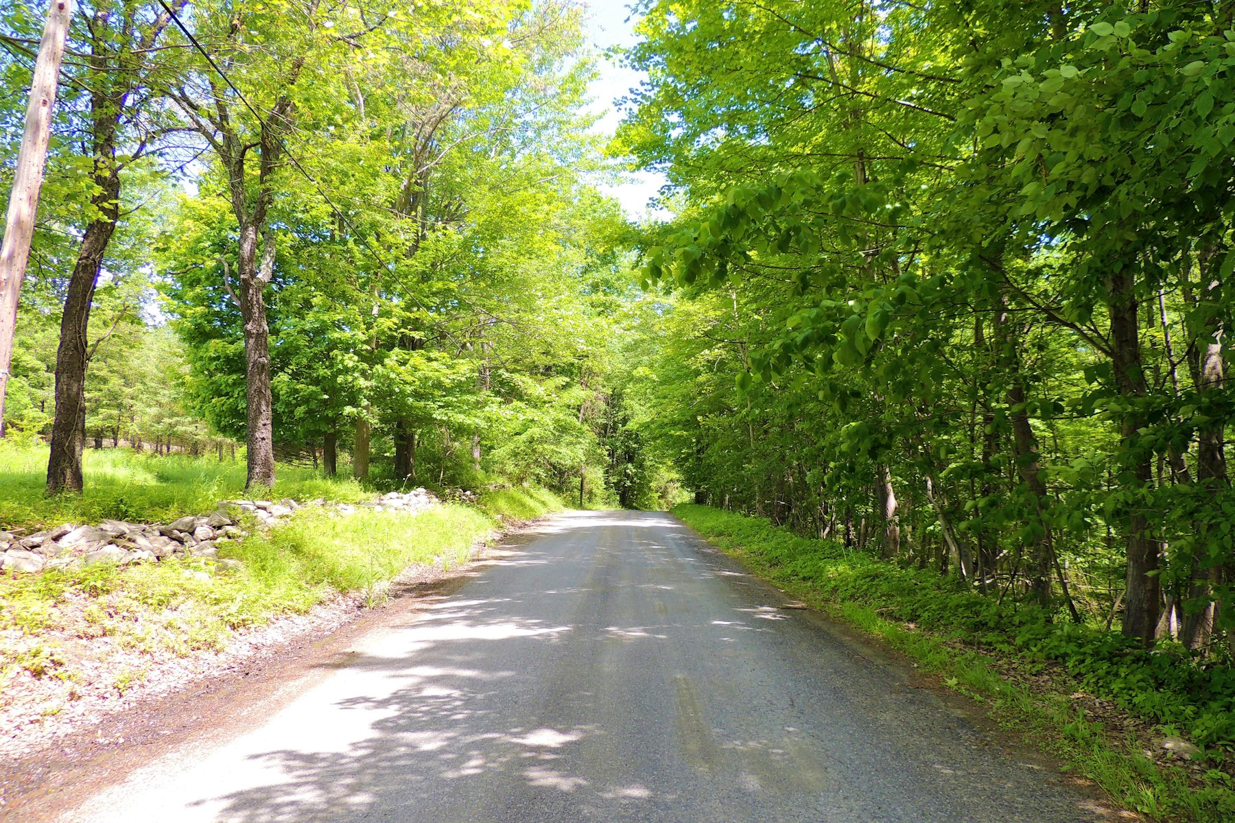 Additional photo for property listing at Earthly Delight Pitts Road Chatham, New York 12136 United States
