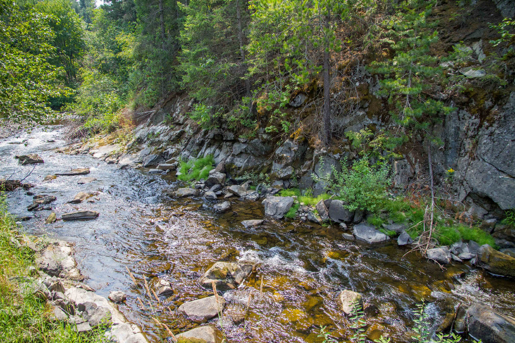Land for Sale at 130+ acre with 2 creeks & existing well 452 Ruby Creek Road Naples, Idaho 83847 United States