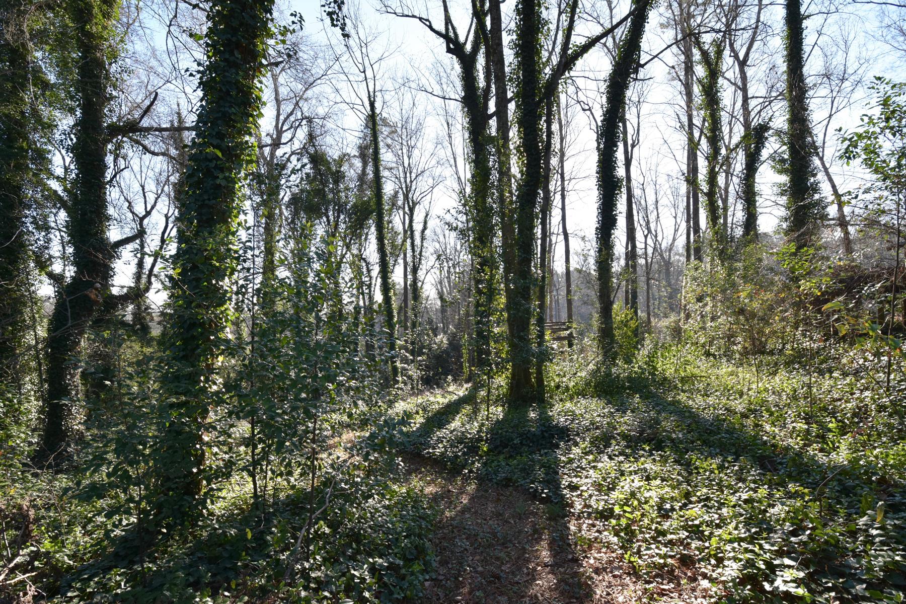 土地 為 出售 在 Gorgeous Private Lot 4621 Dudley Lane Chastain Park, Atlanta, 喬治亞州, 30327 美國