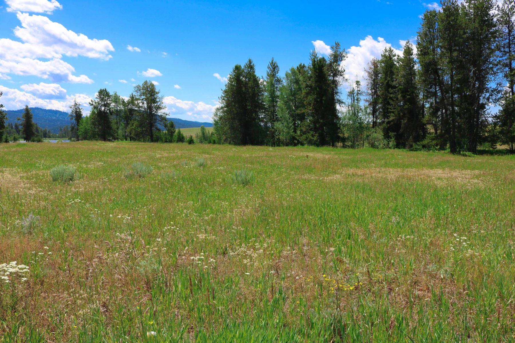 土地 のために 売買 アット 40 Pinewood Lane, Mccall 40 Pinewood Ln, McCall, アイダホ 83638 アメリカ