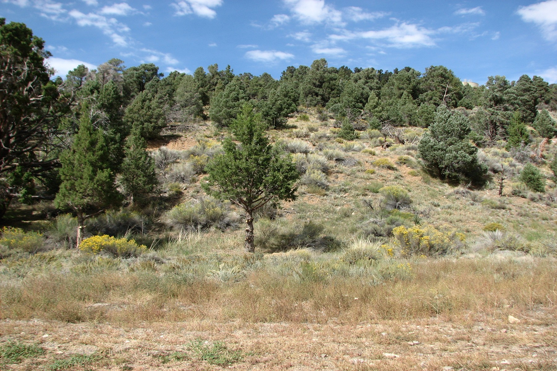 Land for Sale at 46850 Lakewood Drive, Big Bear City, California, 92314 46850 Lakewood Drive Big Bear City, California 92314 United States