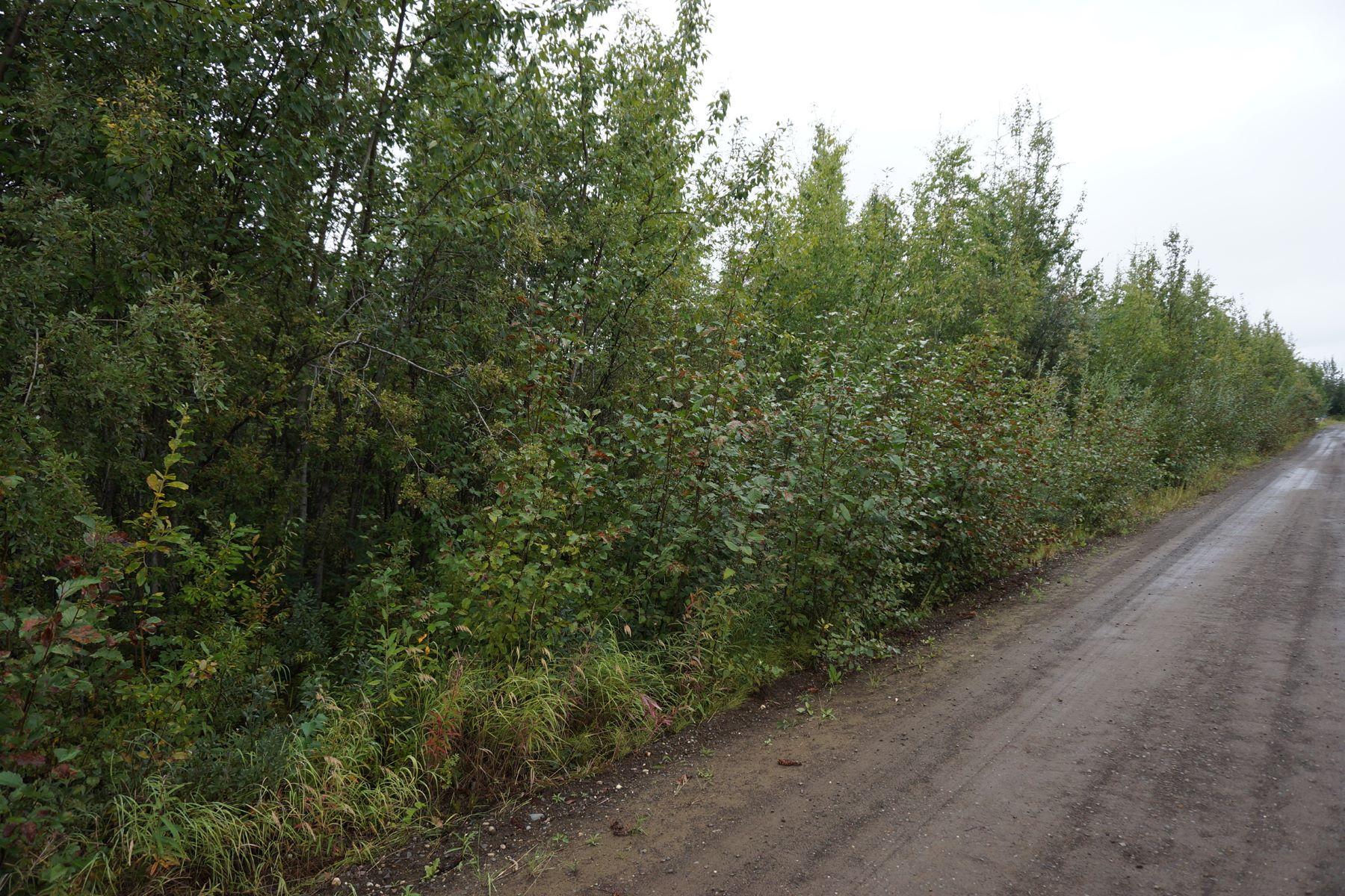 Terreno por un Venta en NHN Tootie Street Lot 6 North Pole, Alaska 99705 Estados Unidos