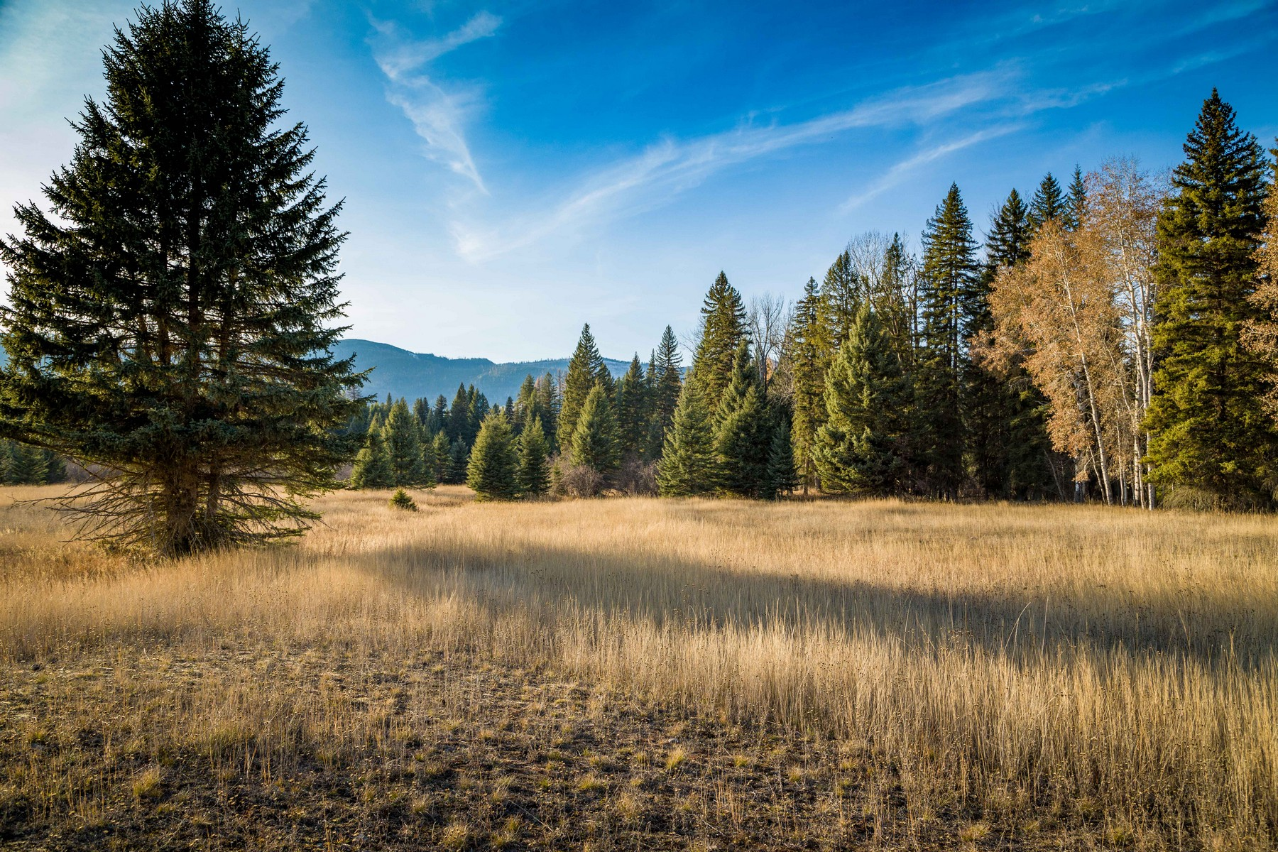 Land for Sale at Nhn Fatty Creek Swan Lake, Montana 59911 United States