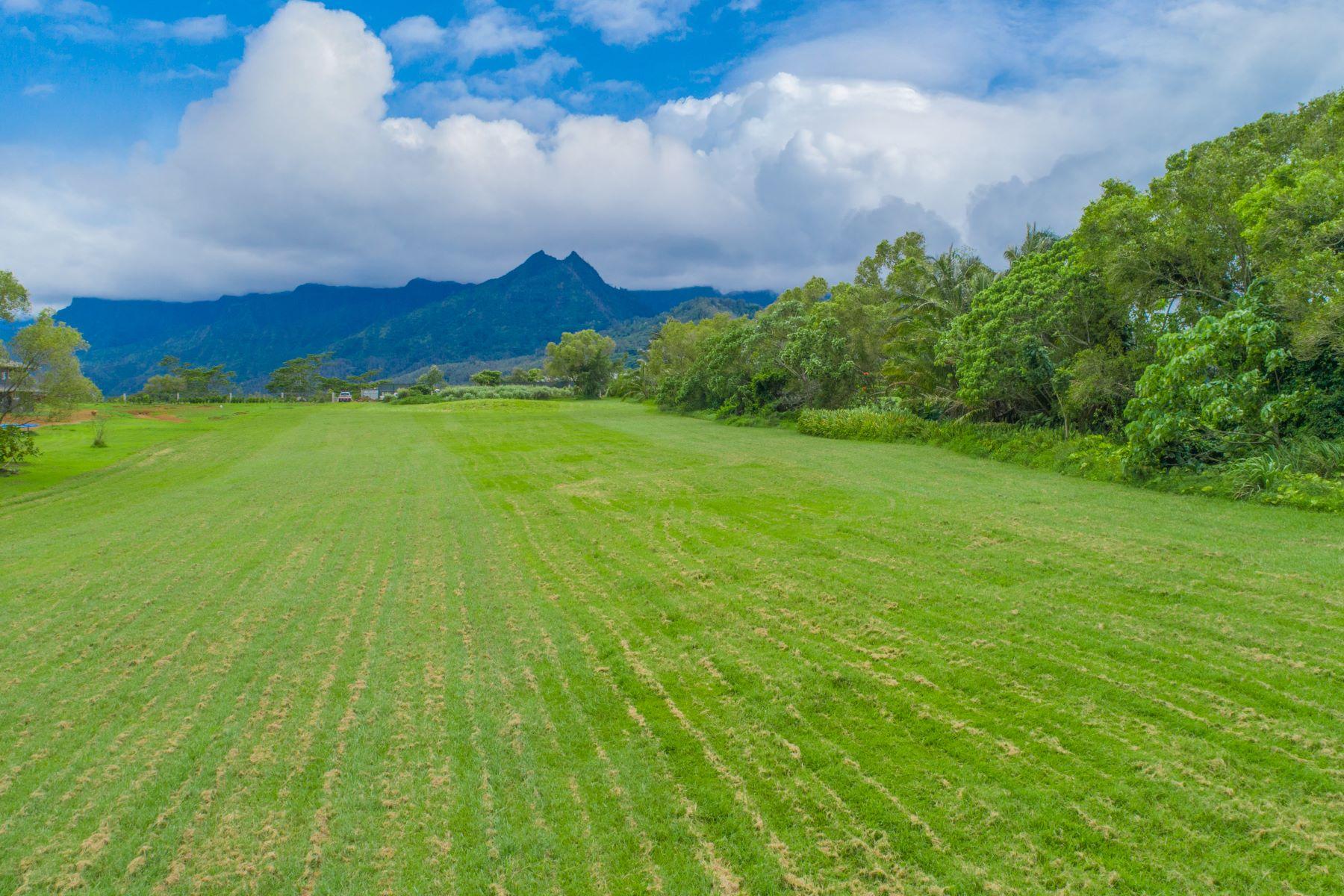 Οικόπεδο για την Πώληση στο Kapaka Mele #1, Princeville, Χαβαη 96722 Ηνωμένες Πολιτείες