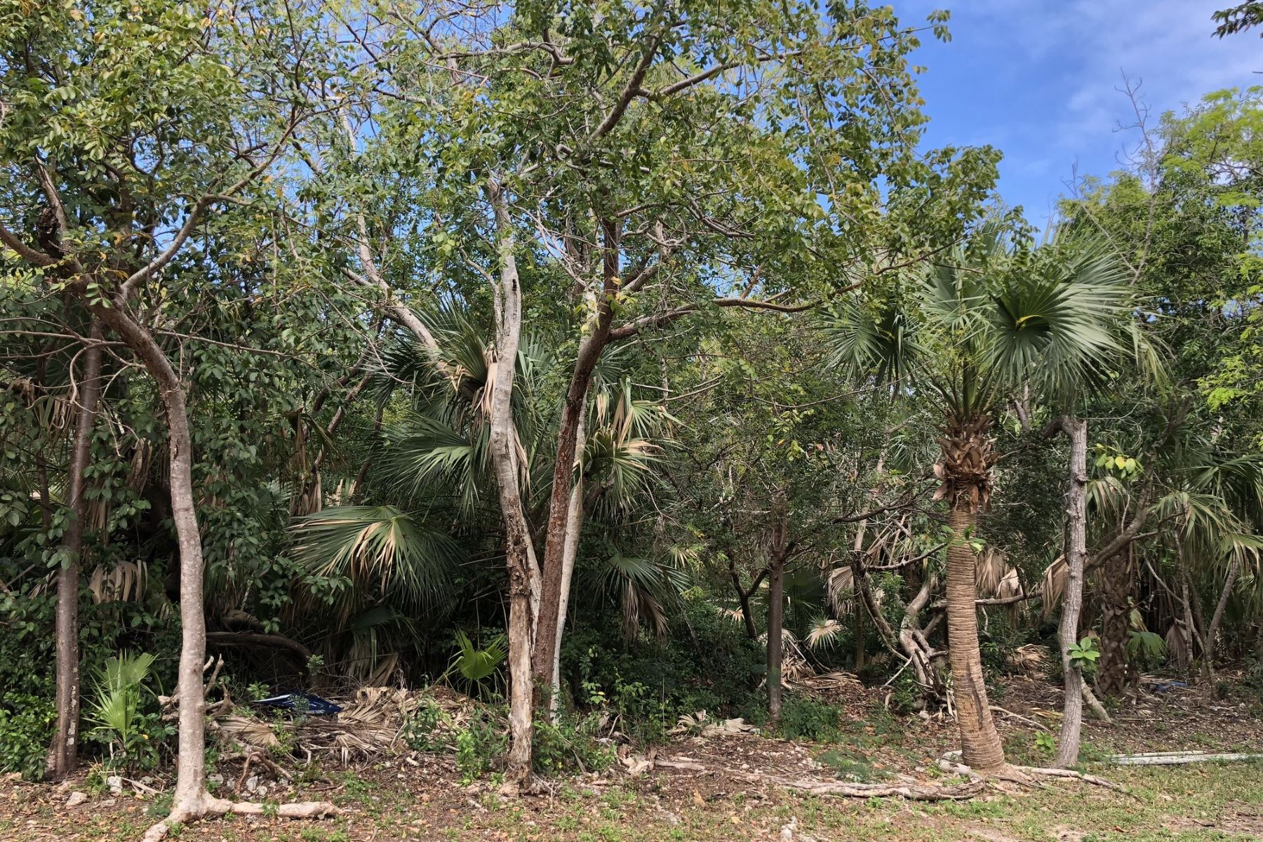 Land for Sale at Lot 4 Coco Bay Green Turtle Cay, Abaco, Bahamas