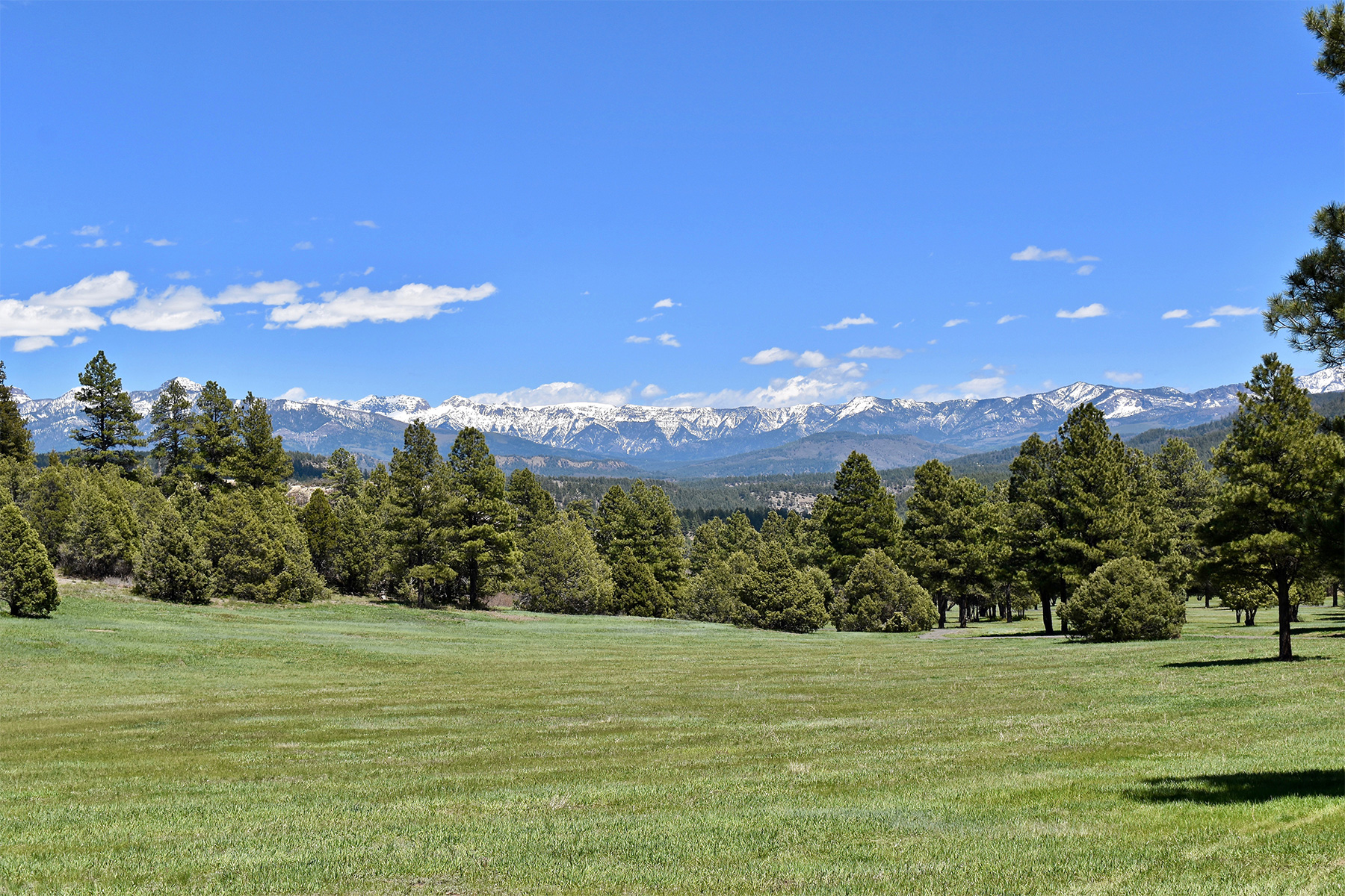 Vivienda unifamiliar por un Venta en Taylor Canyon Ranch 8231 CR 500 Pagosa Springs, Colorado, 81147 Estados Unidos