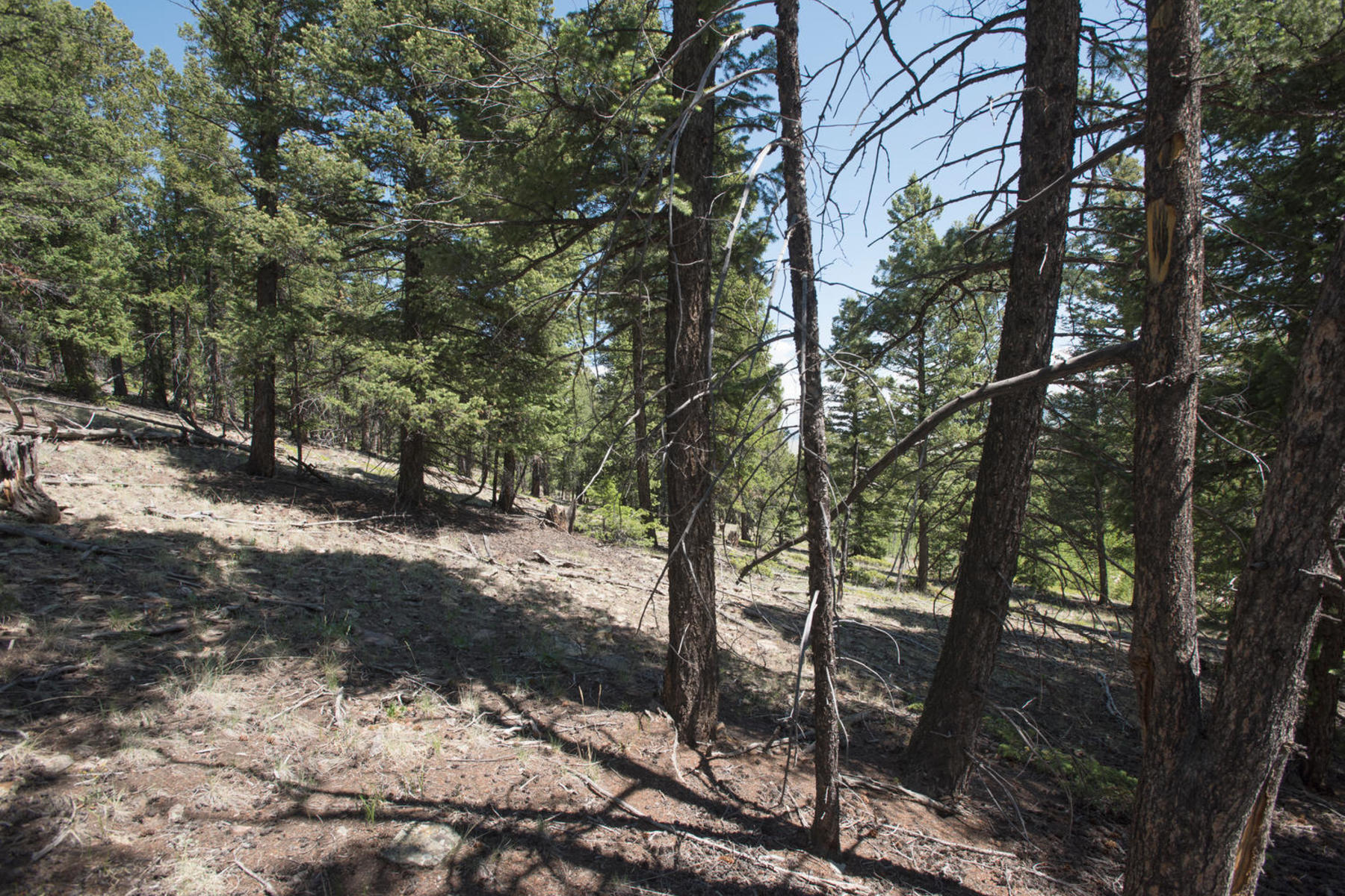 Land for Active at Redhill Forest Land Lot 498 Redhill Road Fairplay, Colorado 80440 United States