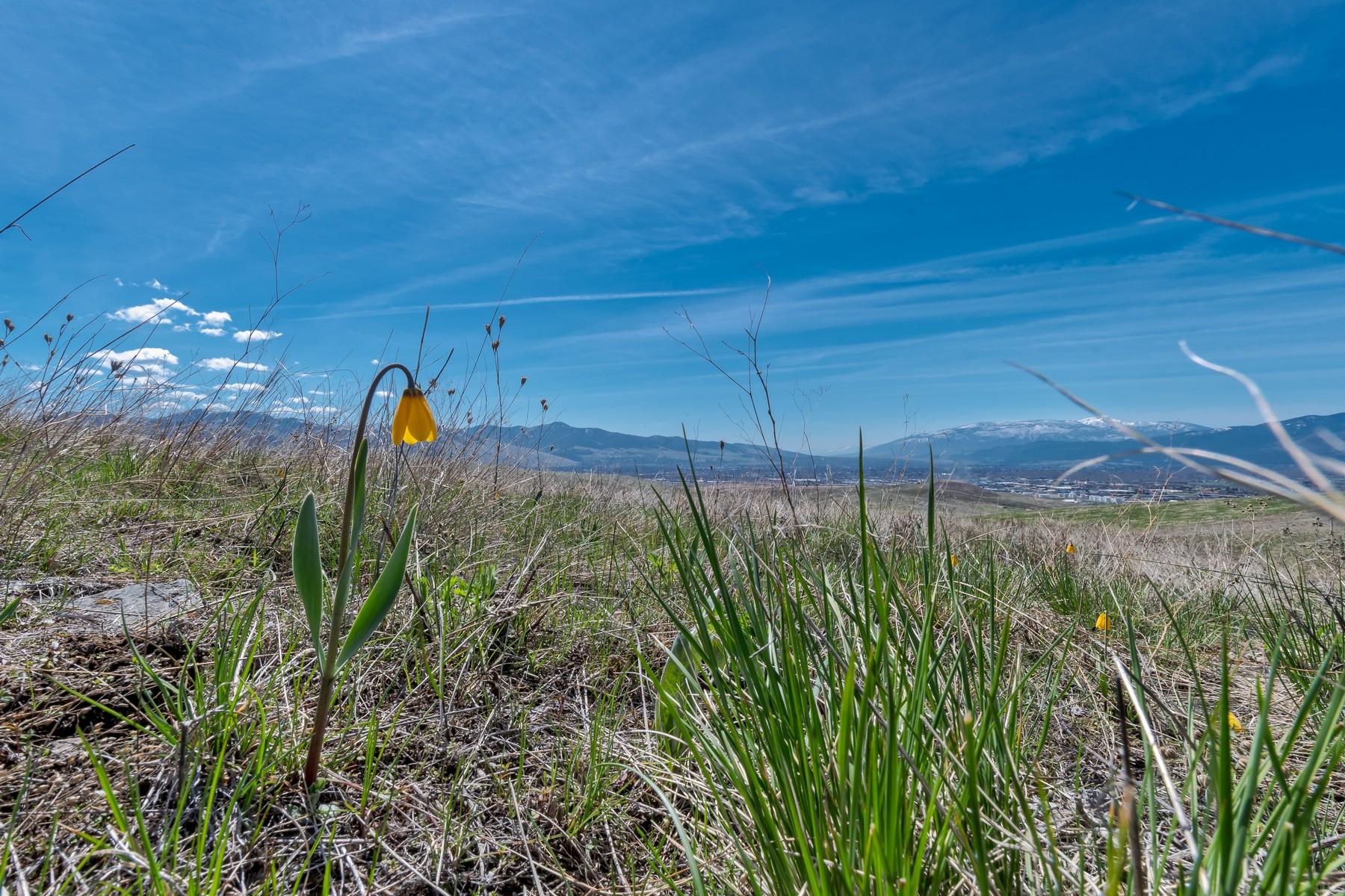 Land für Verkauf beim Missoula, Montana 59808 Vereinigte Staaten