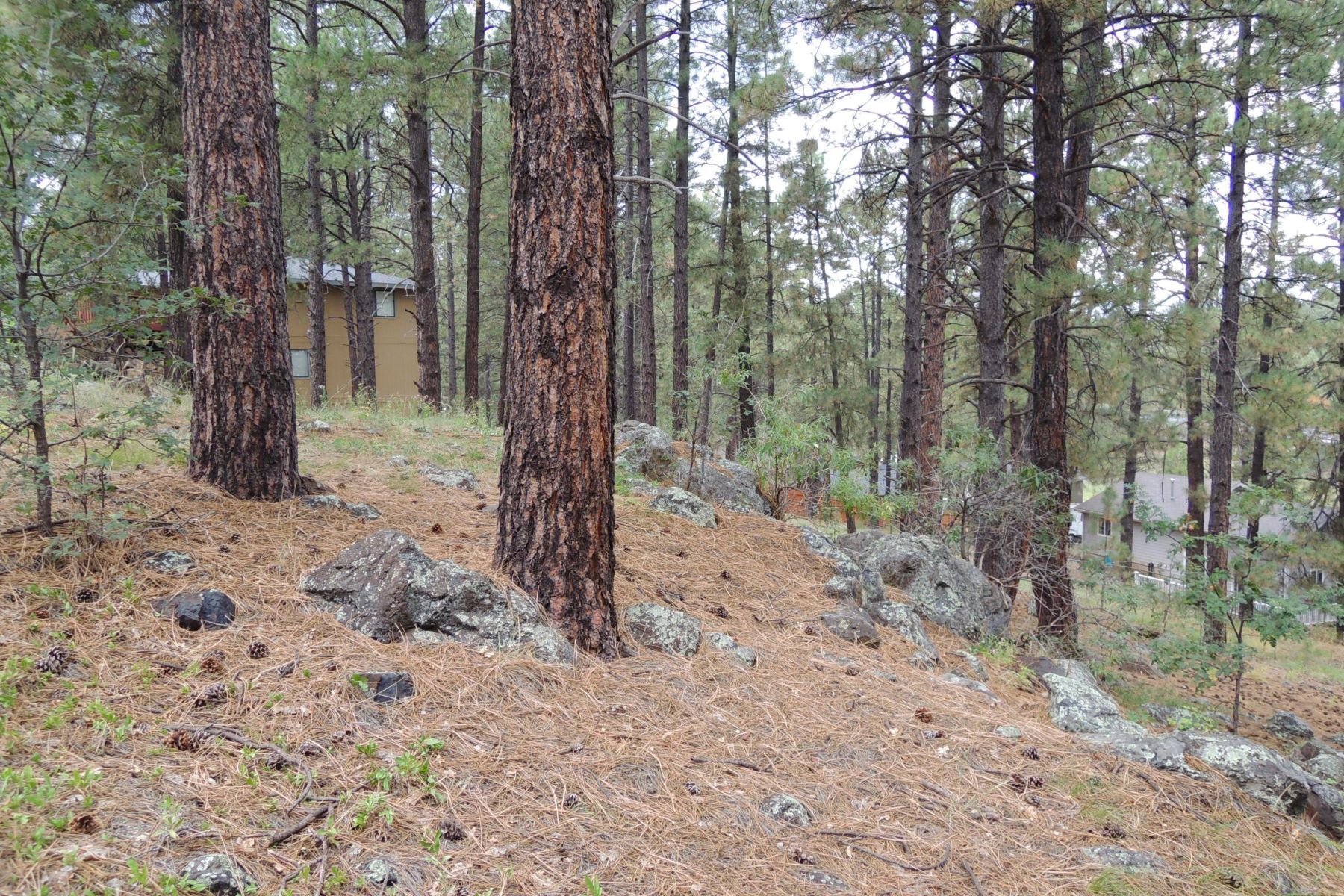Land for Sale at Beautifully Wooded Lot In University Heights 1280 W Shullenbarger DR Flagstaff, Arizona 86005 United States