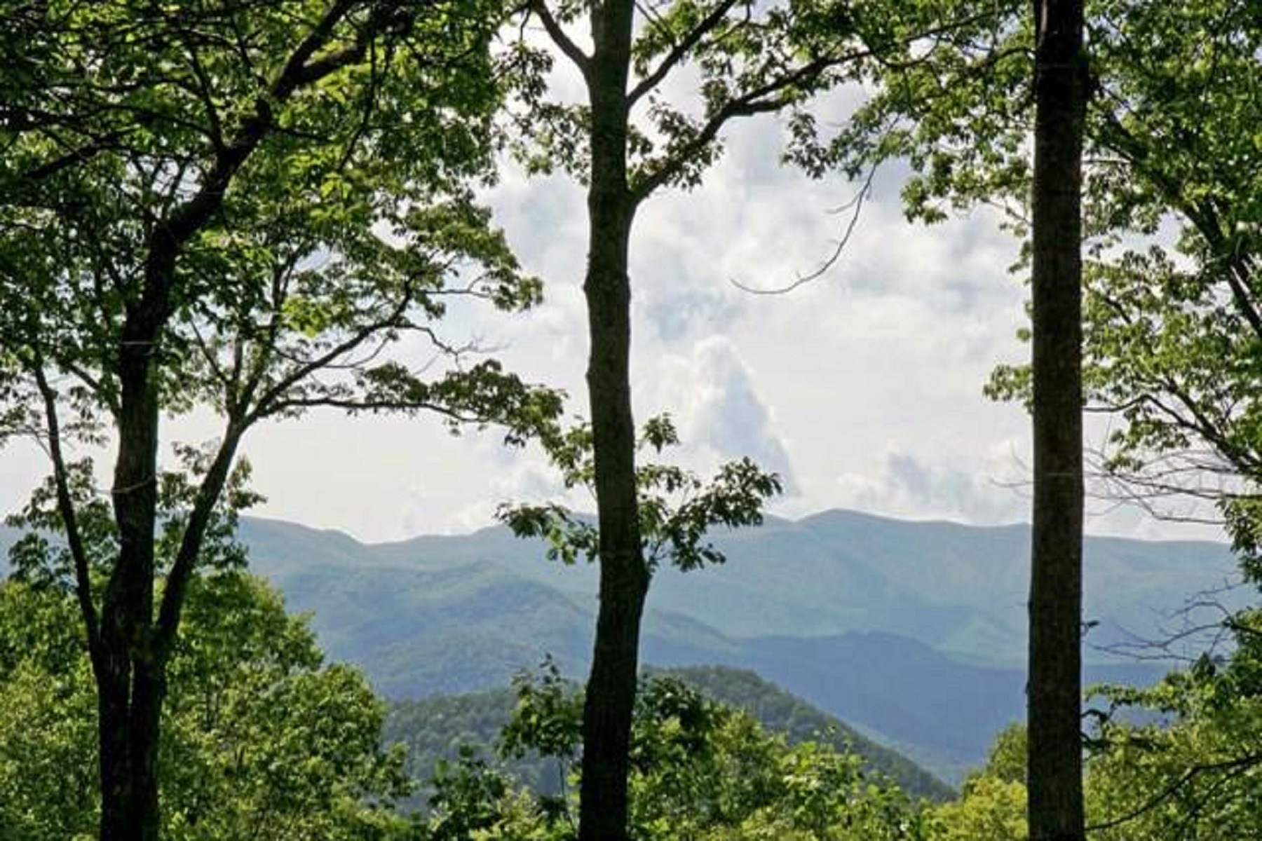 Land for Sale at Center Trust Highland Gap Road Scaly Mountain, North Carolina 28775 United States