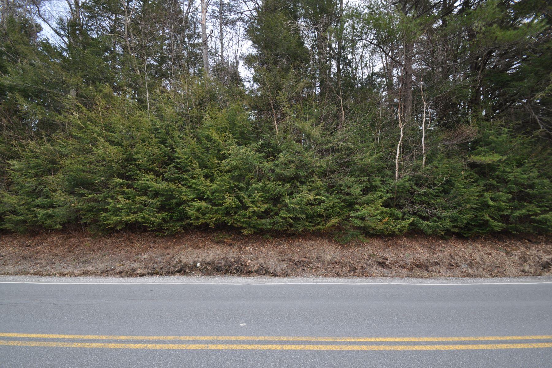 土地,用地 为 销售 在 Unity Springs Road Unity, 新罕布什尔州 03743 美国