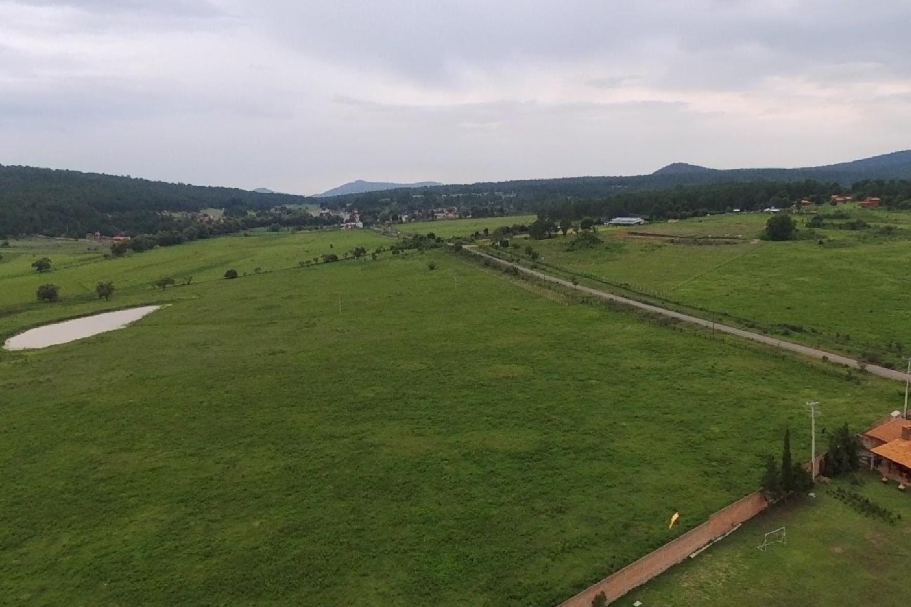 토지 용 매매 에 Lote Campestre, Los Soyates, Tapalpa, Jalisco Km 8 Carretera Tapalpa, Los Soyates Tapalpa, Jalisco 49340 멕시코