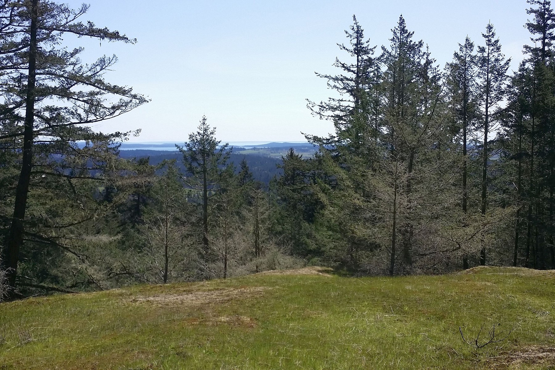 Land for Sale at Top of the World Acreage on San Juan Island 1636 Cady Mountain Road Friday Harbor, Washington 98250 United States