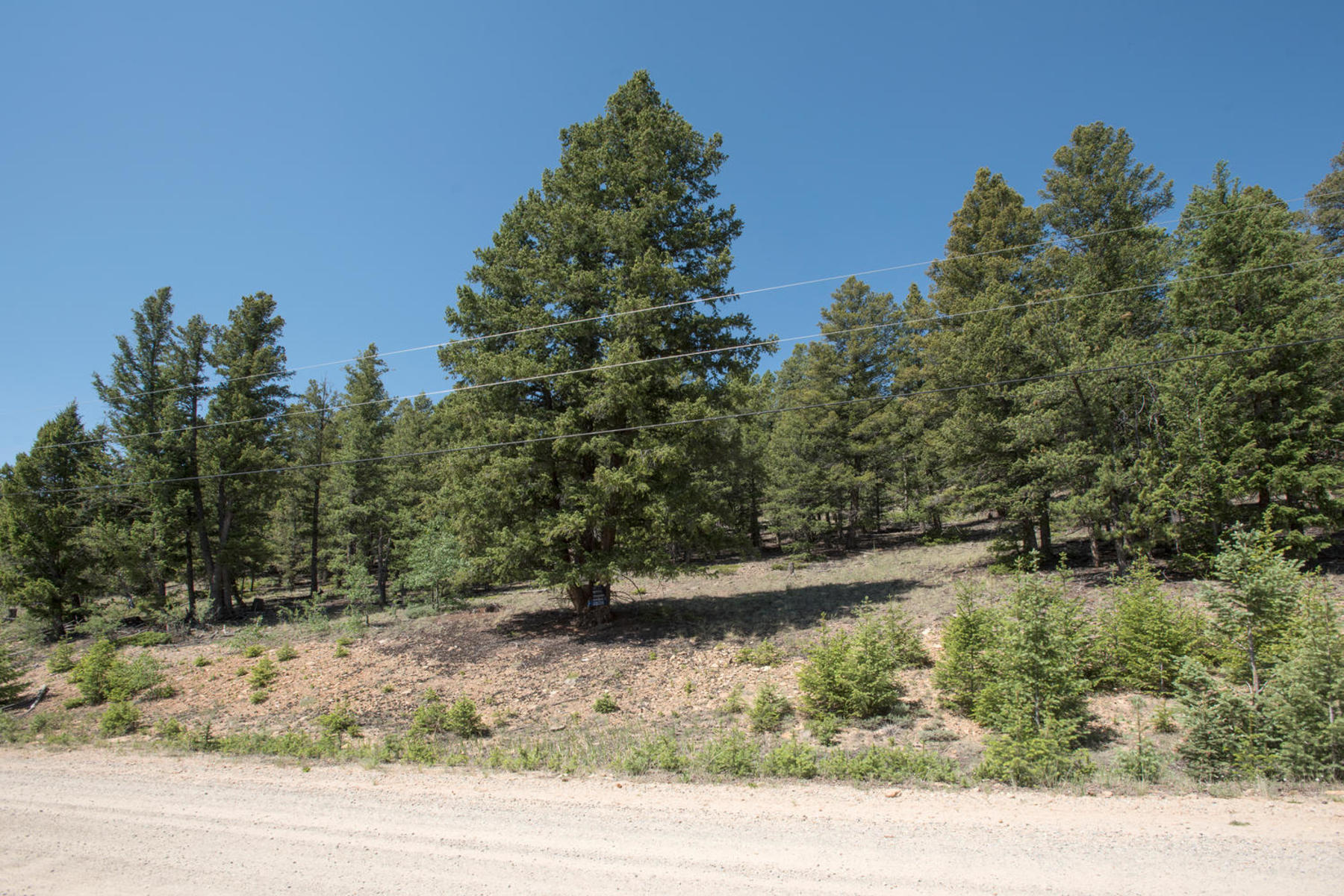 Additional photo for property listing at Redhill Forest Land Lot 498 Redhill Road Fairplay, Colorado 80440 Estados Unidos